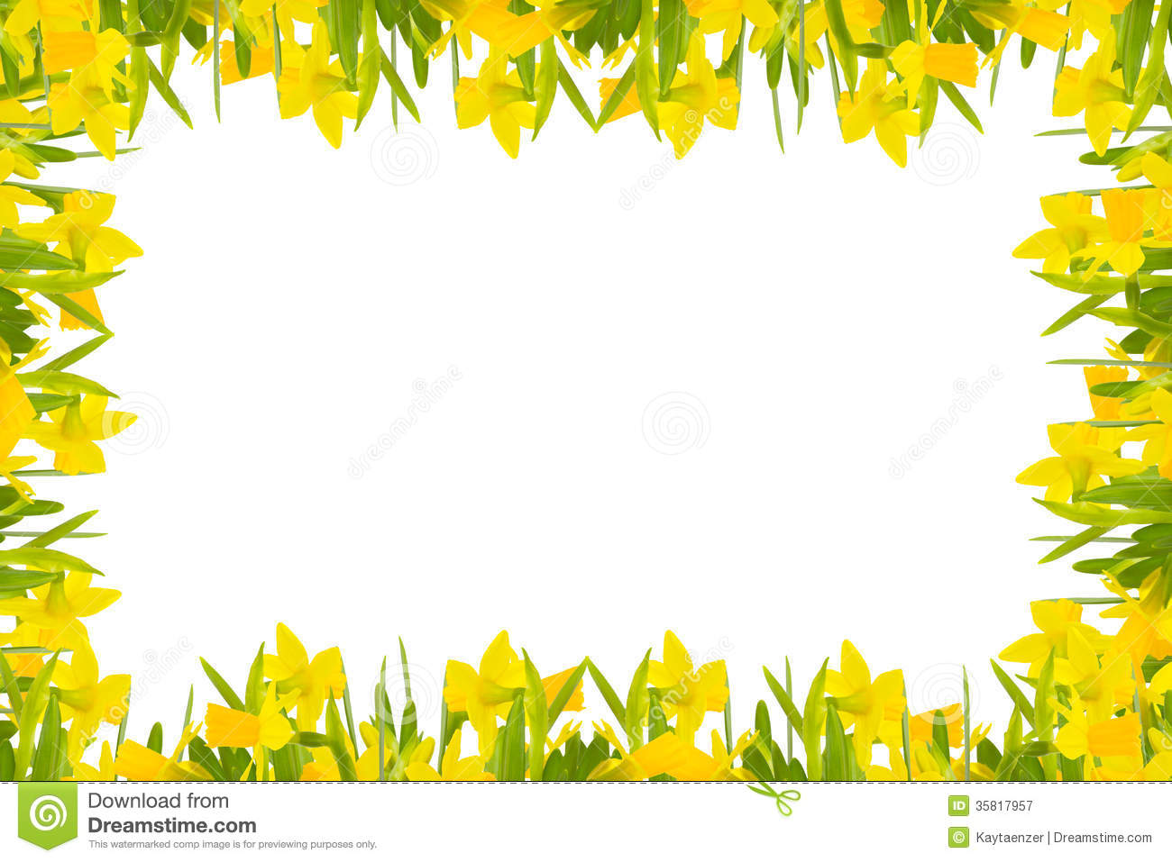 Daffodils Frame Royalty Free Stock Photography - Image: 35817957