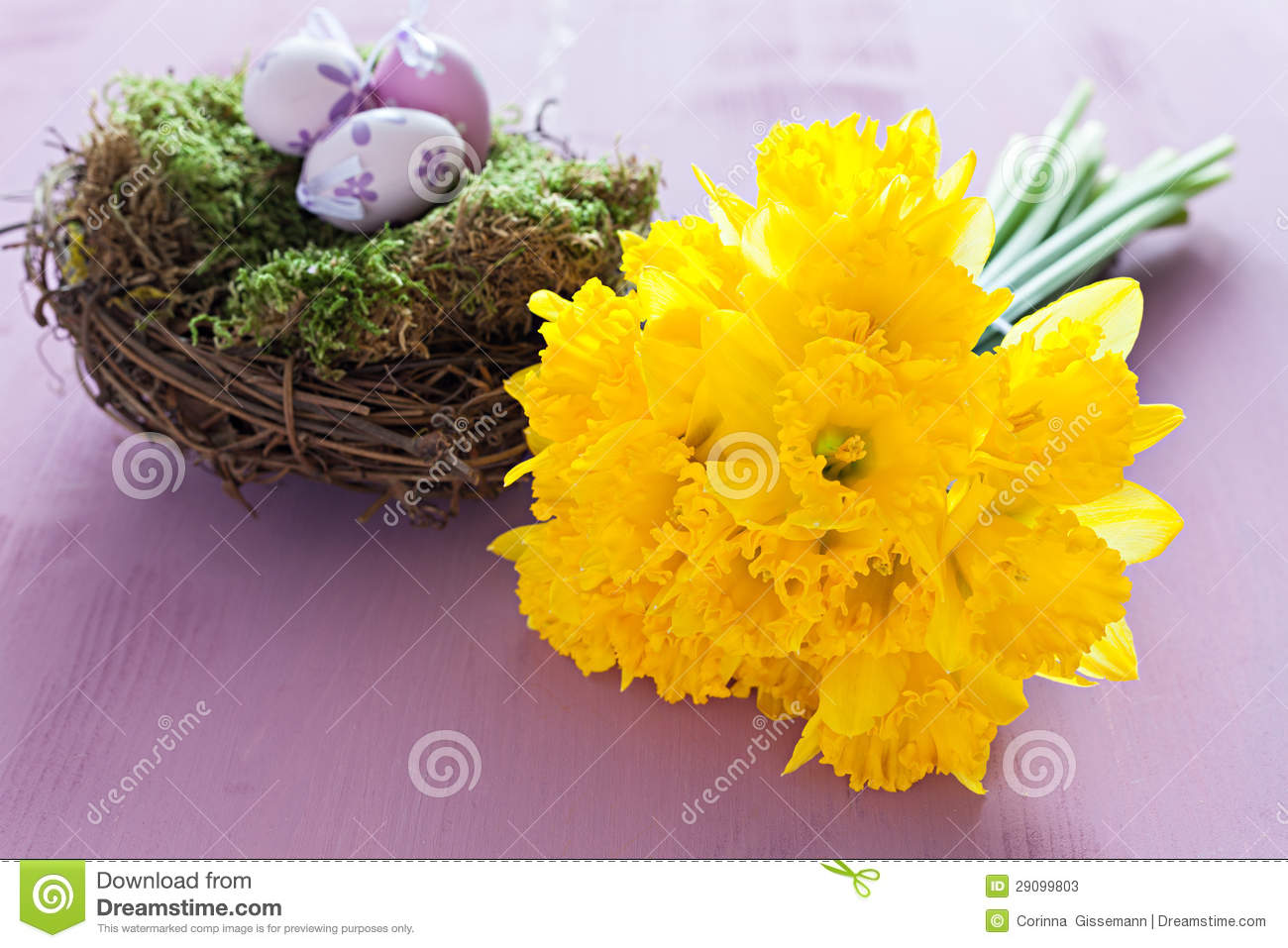 Daffodils And Nest With Easter Eggs