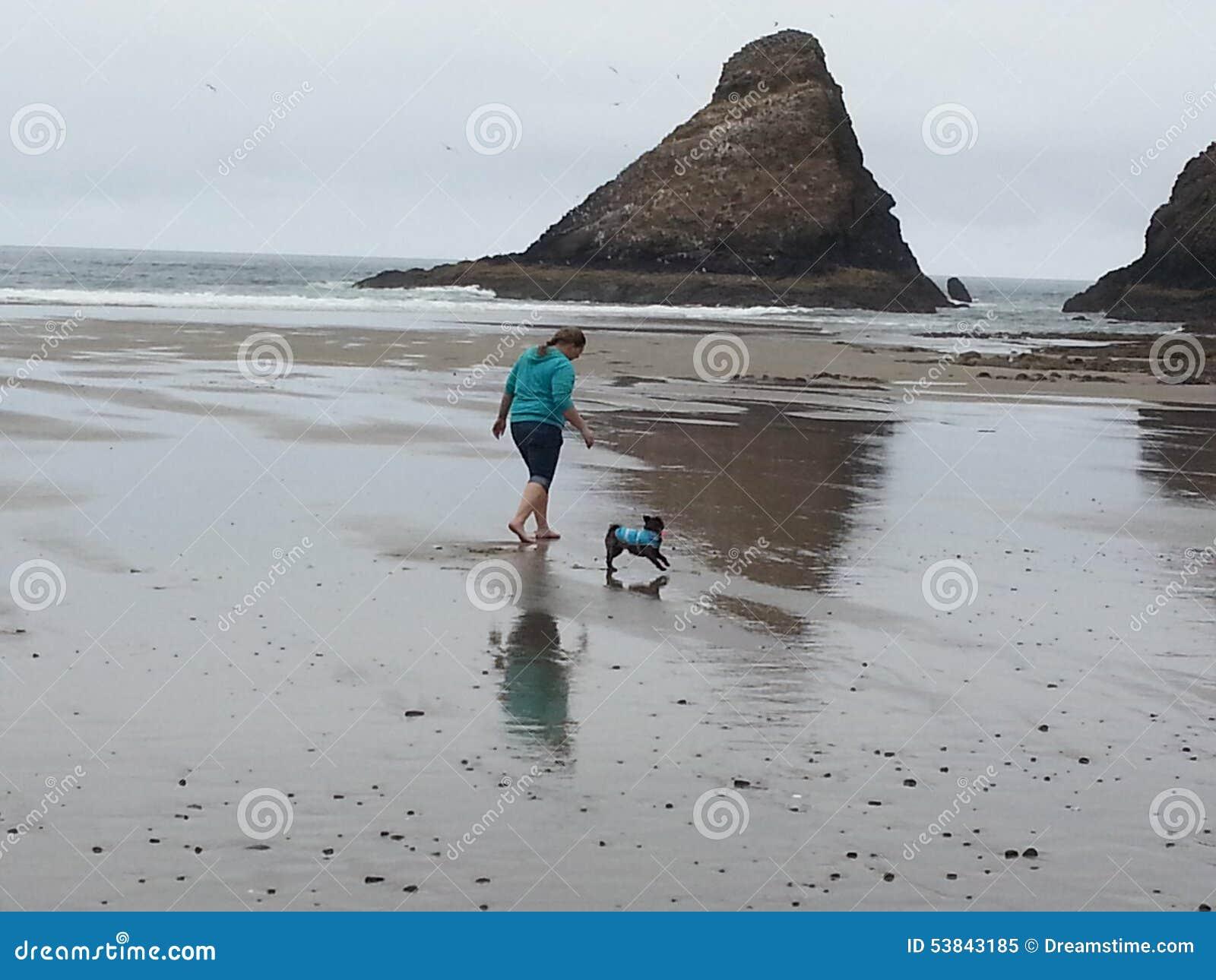 Dag på stranden