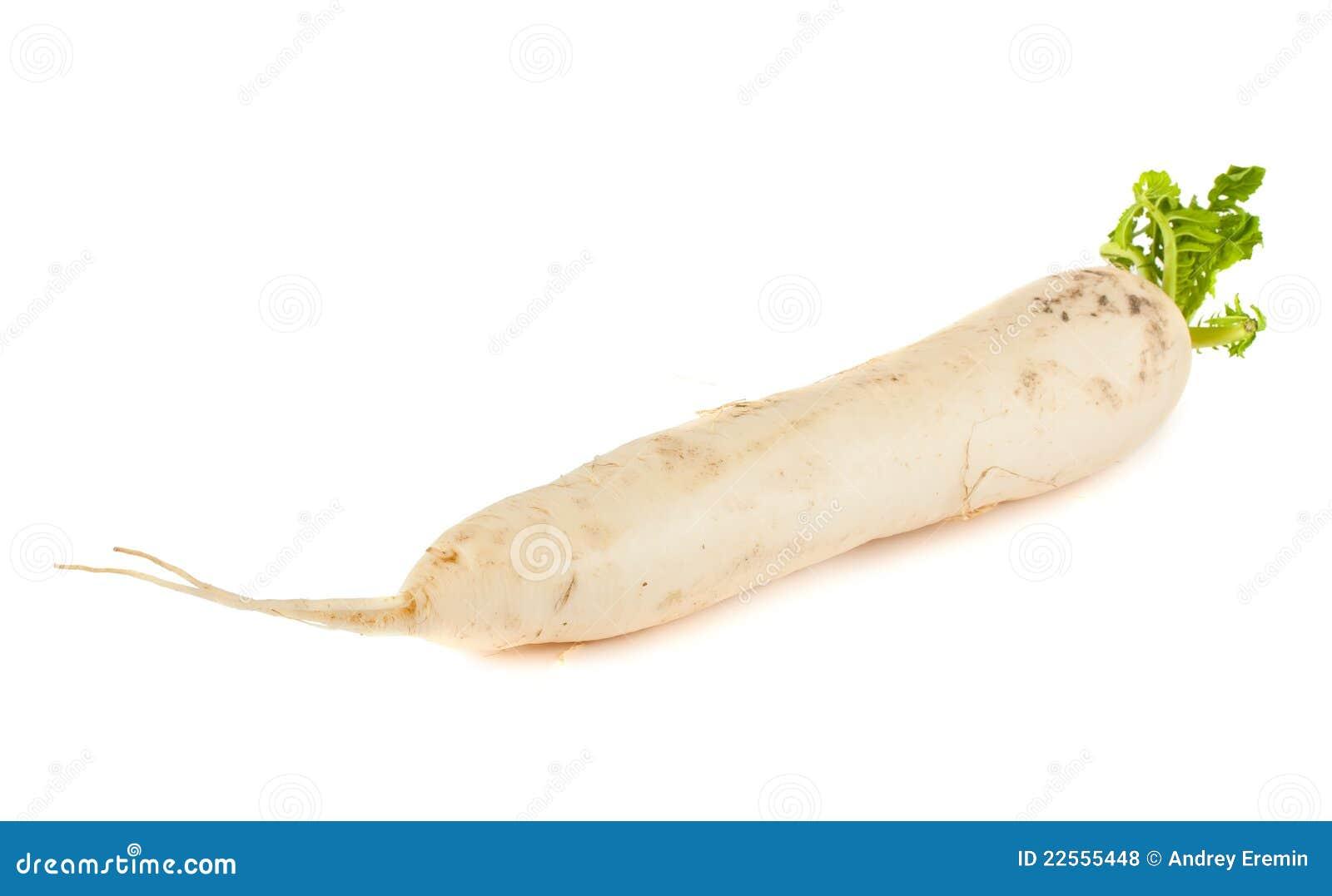 Daikon radish