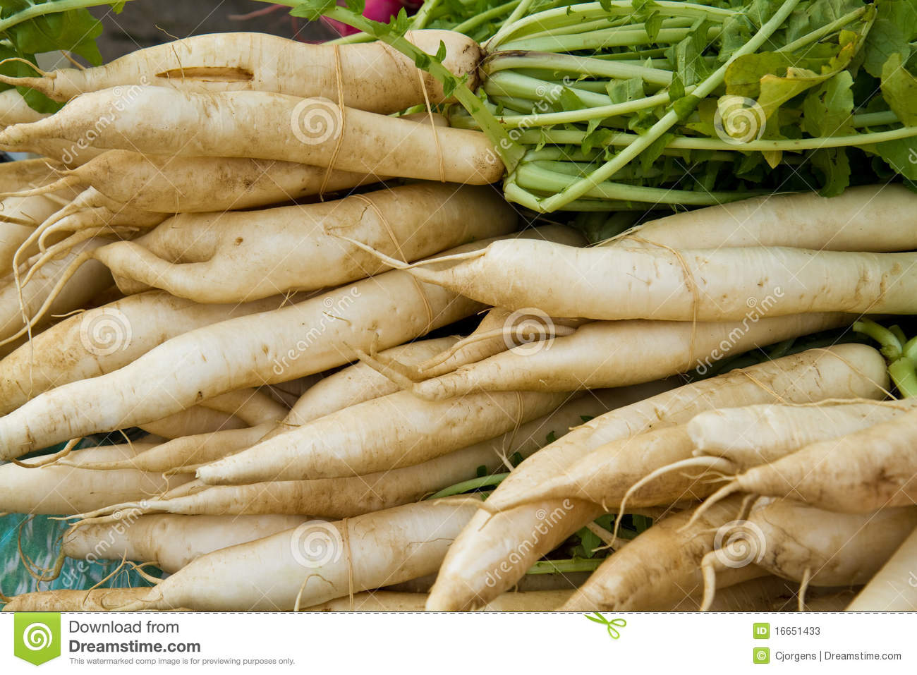 abstract of radishes as pesticide Based pesticide using for tea tree, cotton, and vegetable (9) have  abstract  muto, m, huang, j w,  in summary, radish seed extracts may be a valuable.