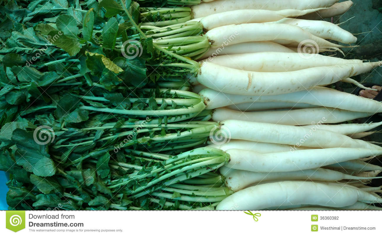 how to eat white radish