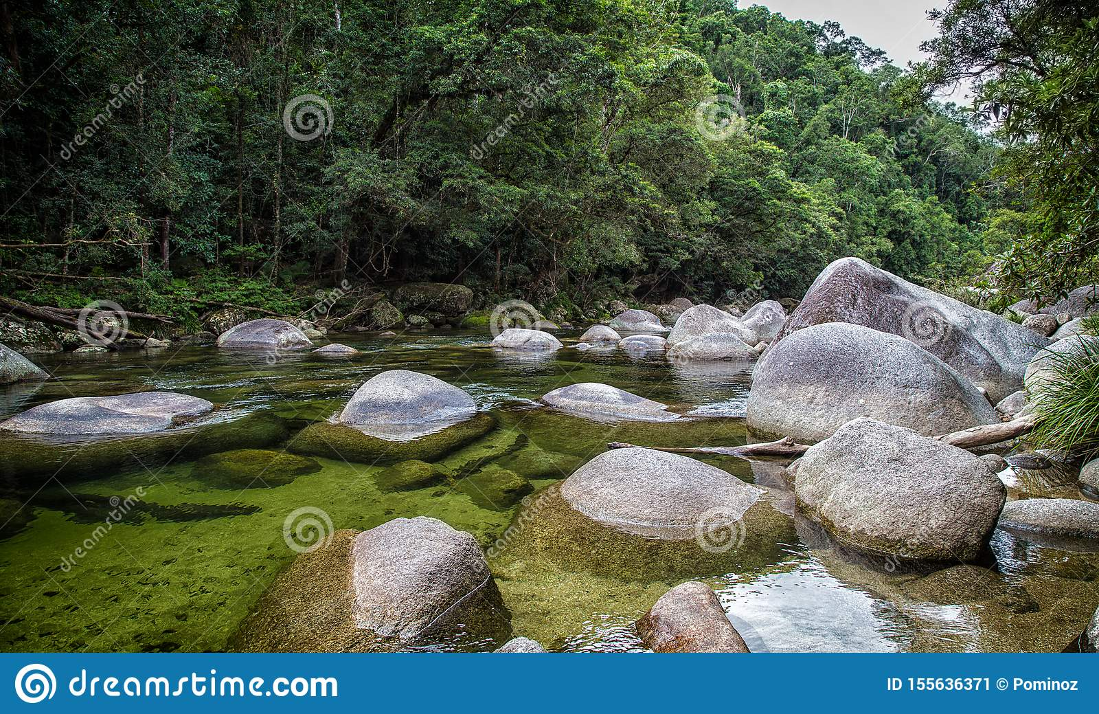 Daintree Nationaal Park, Australi?