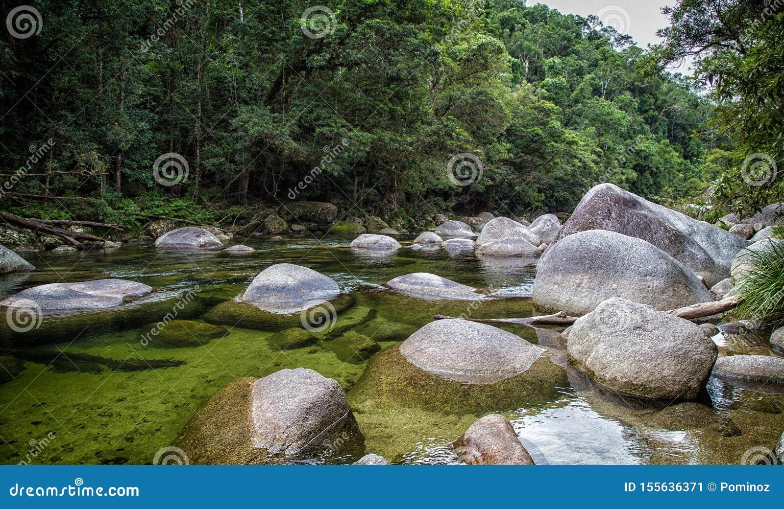 Daintree park narodowy, Australia