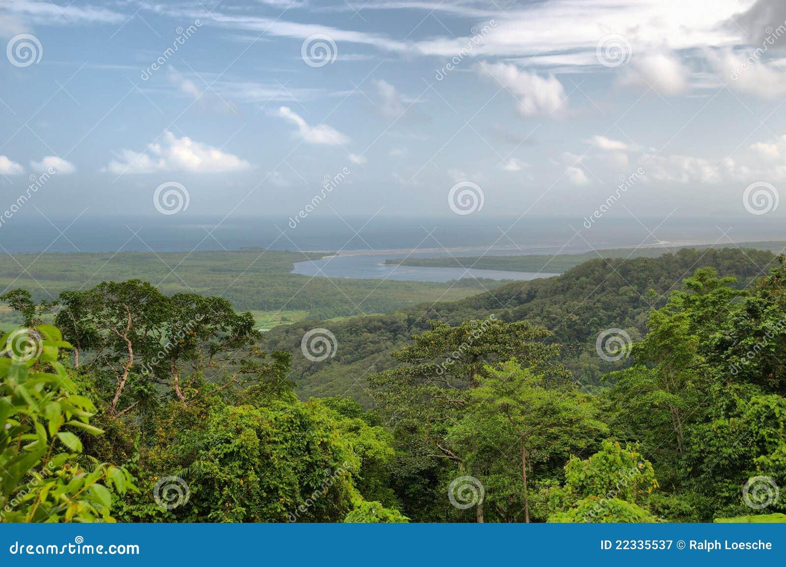 Daintree park narodowy podróżowanie