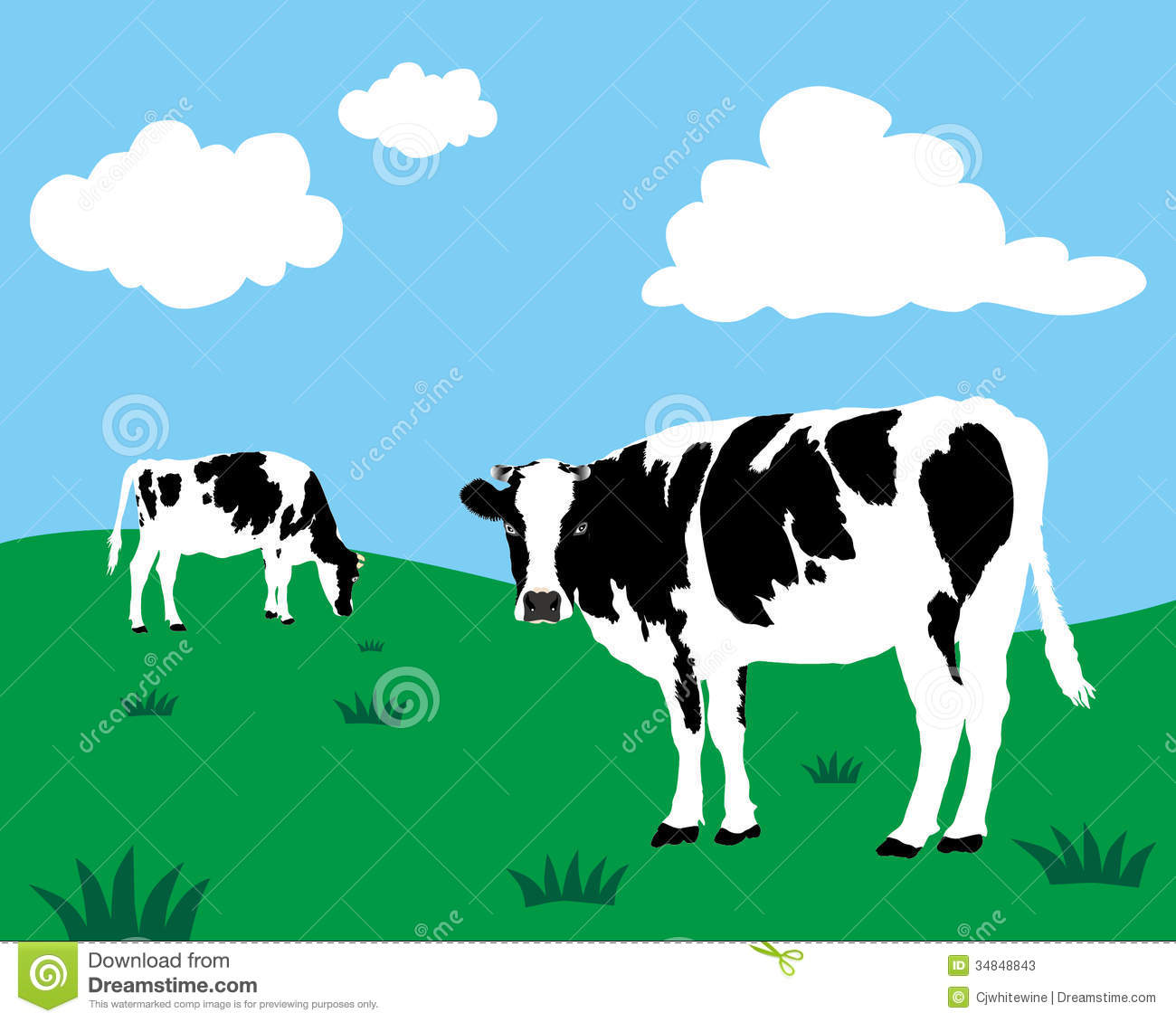Cattle Cartoons Illustrations