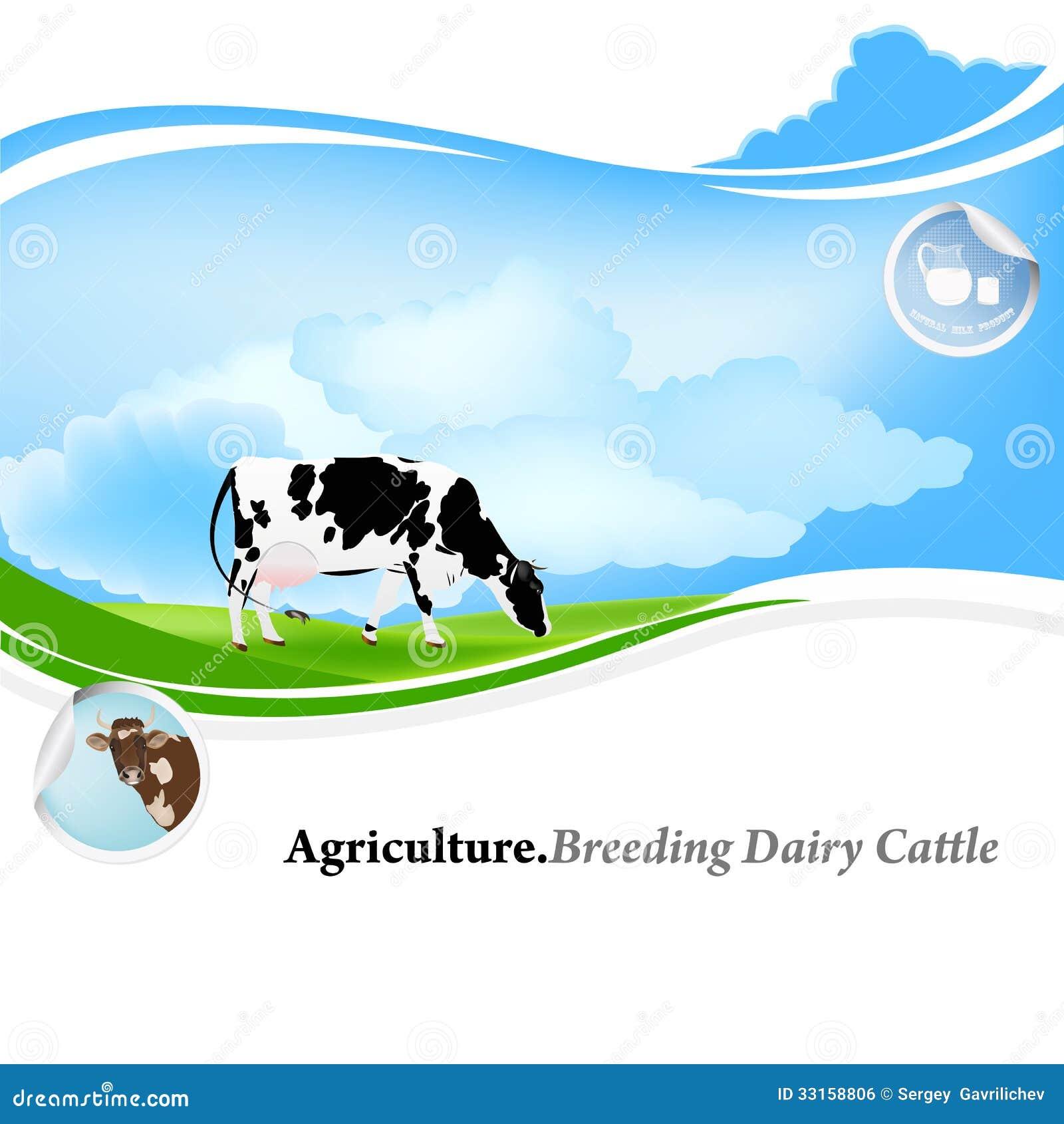 Dairy Farming Stock Illustration Of Green