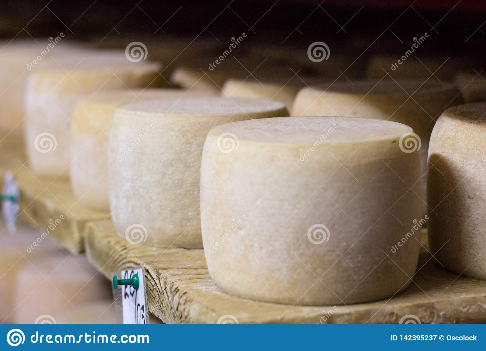 Dairy food production farm house with white cheese heads riping on shelves
