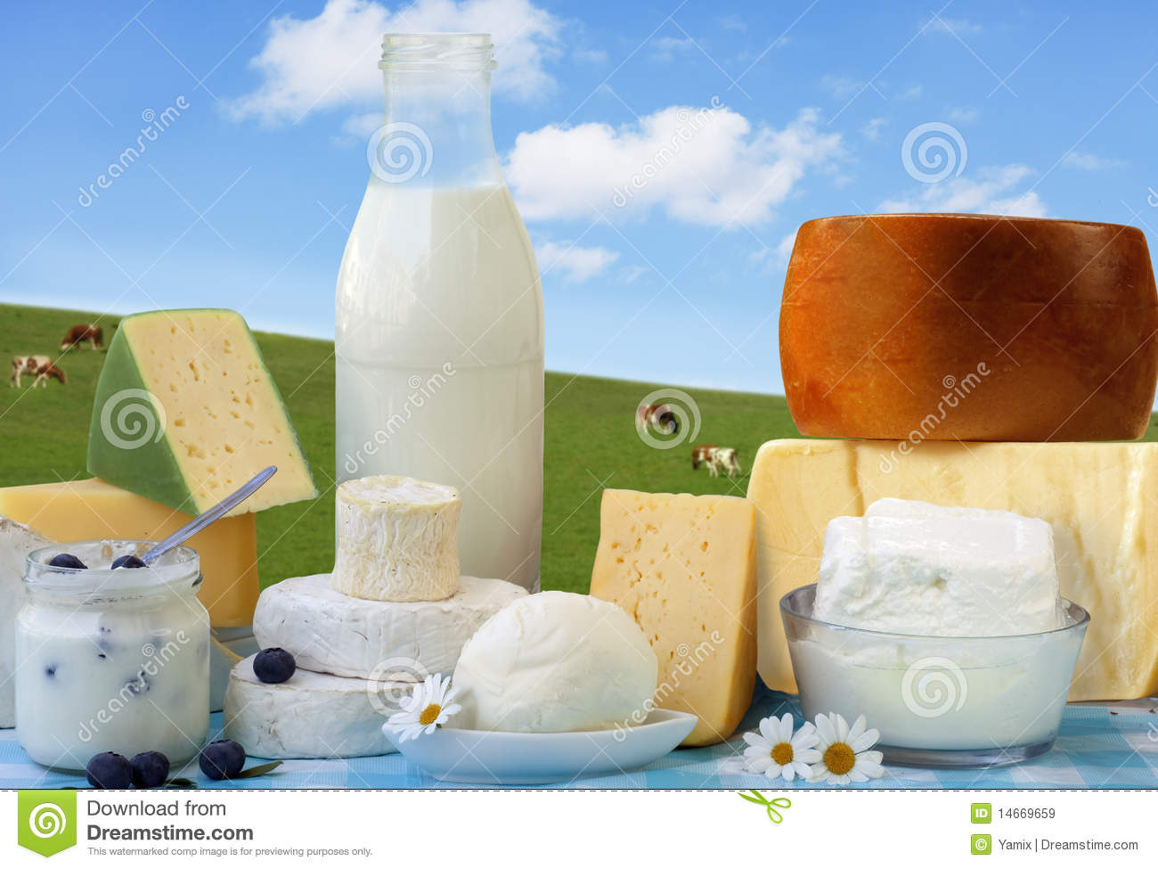 Download Dairy Products stock image. Image of groceries, meal - 14669659