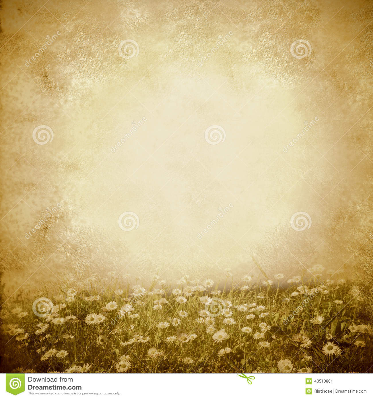 Daisies Spring Meadow Vintage Background Stock Photo