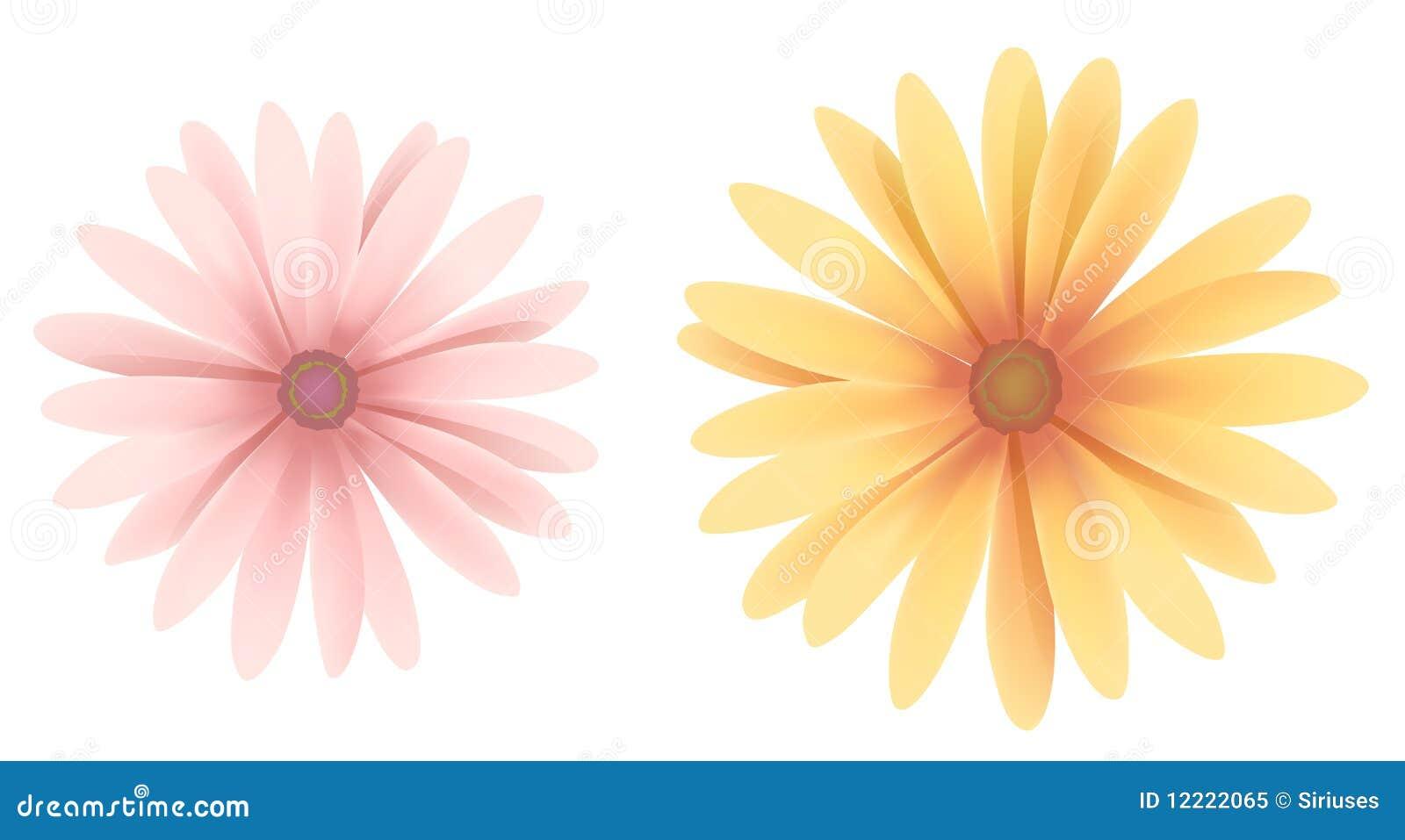 Daisy Royalty Free Stock Photo - Image: 12222065 White Daisy Flowers Clipart