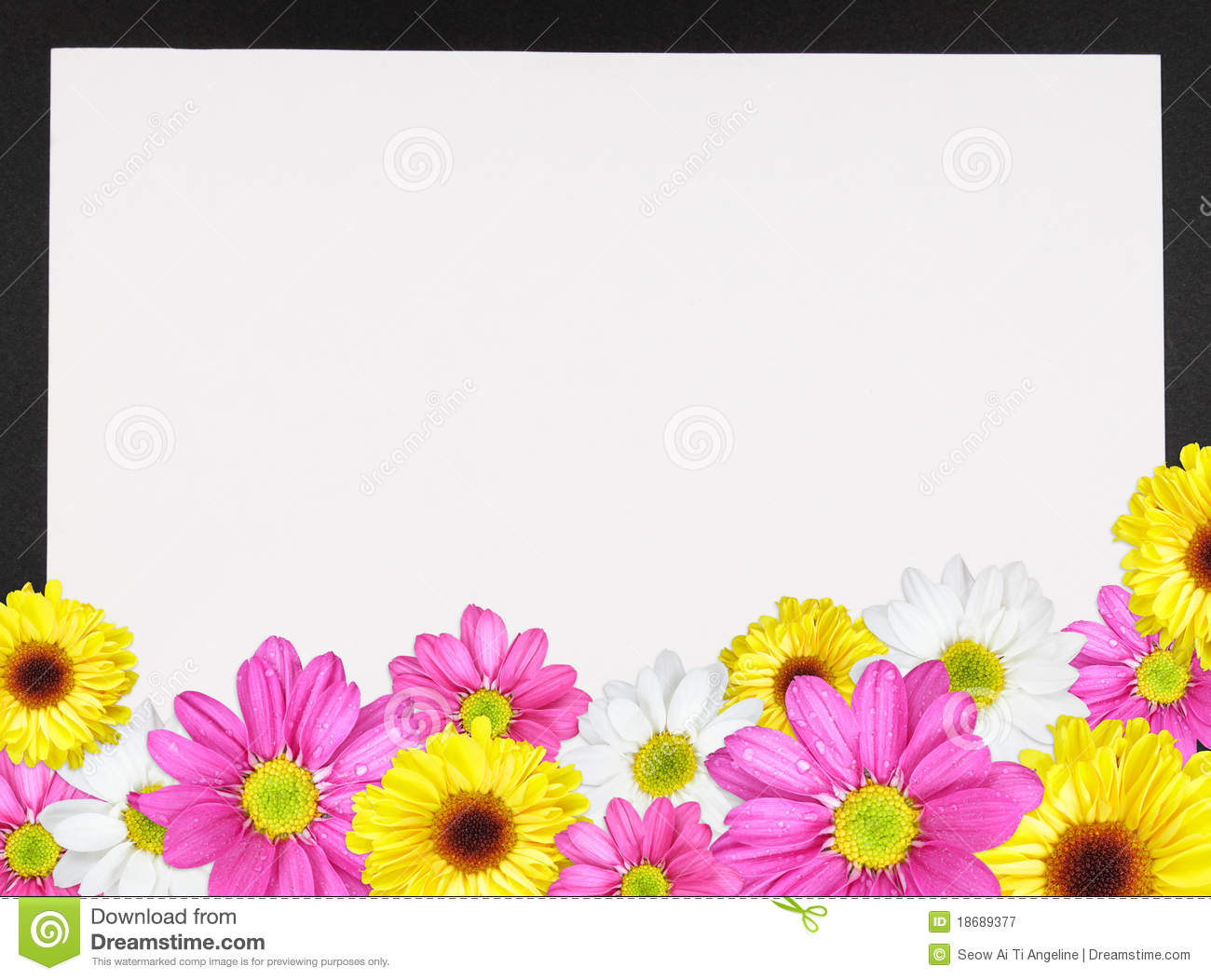 Daisy Border 2 Royalty Free Stock Photography - Image: 18689377