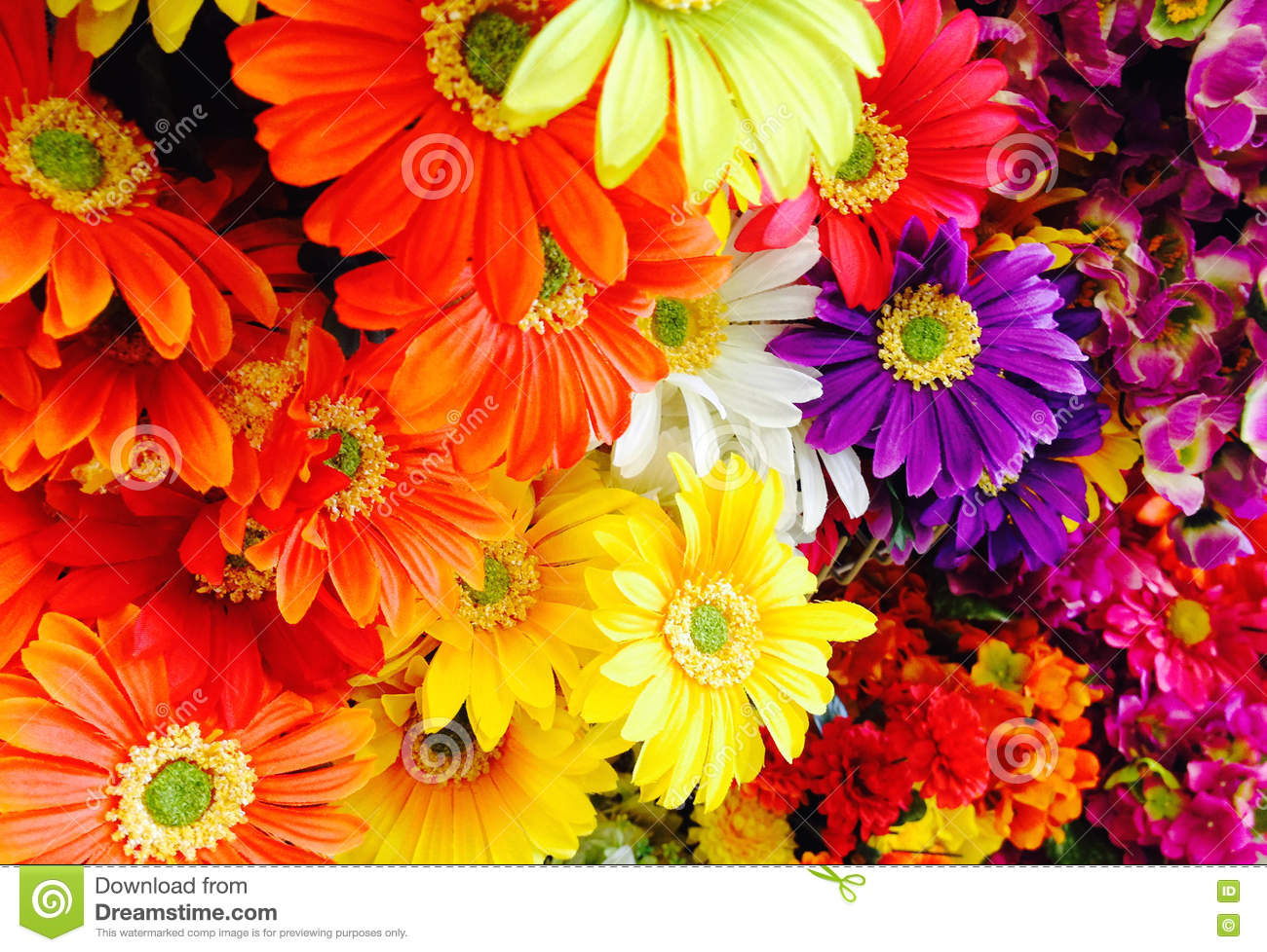 Famous Science Project Flowers Changing Colors Composition ...