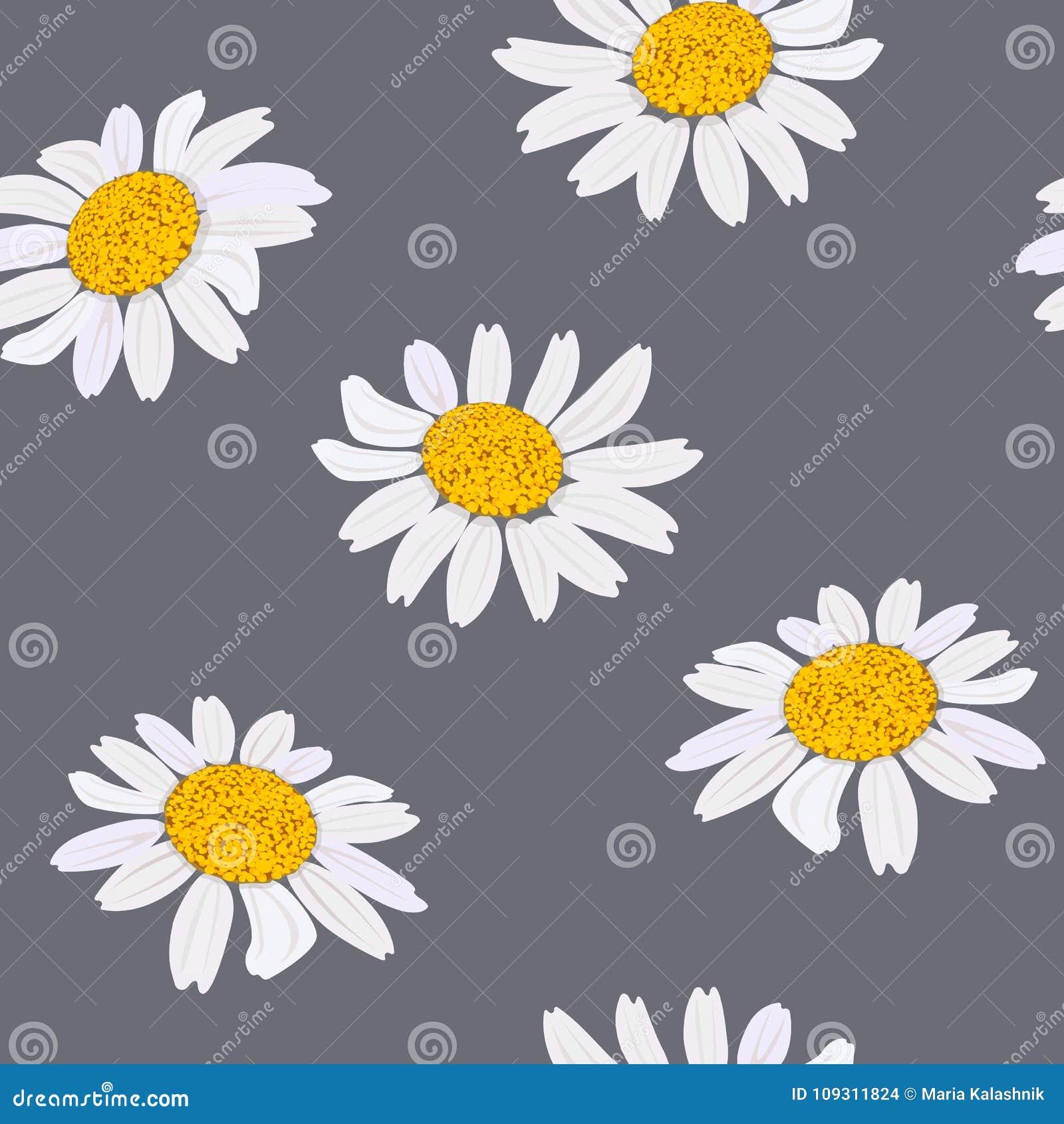 Daisy Flowers Heads Seamless Pattern Vector Illustration Purple