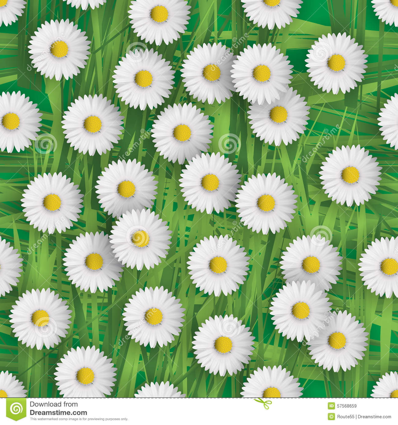 Daisy Flowers Stock Vector Illustration Of Meadow Field 57568659