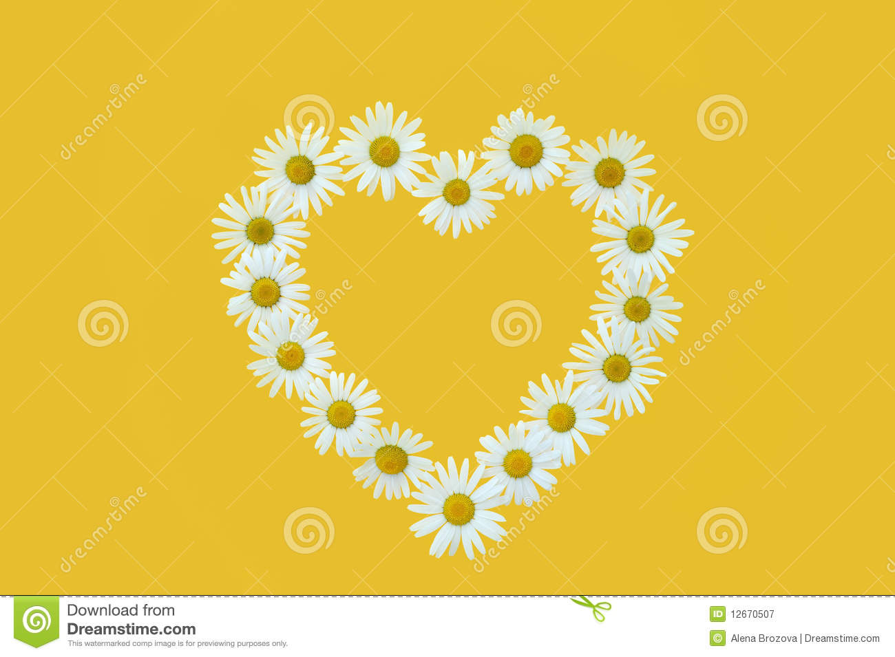 Daisy In Love Shape Over Yellow Background Royalty Free ...