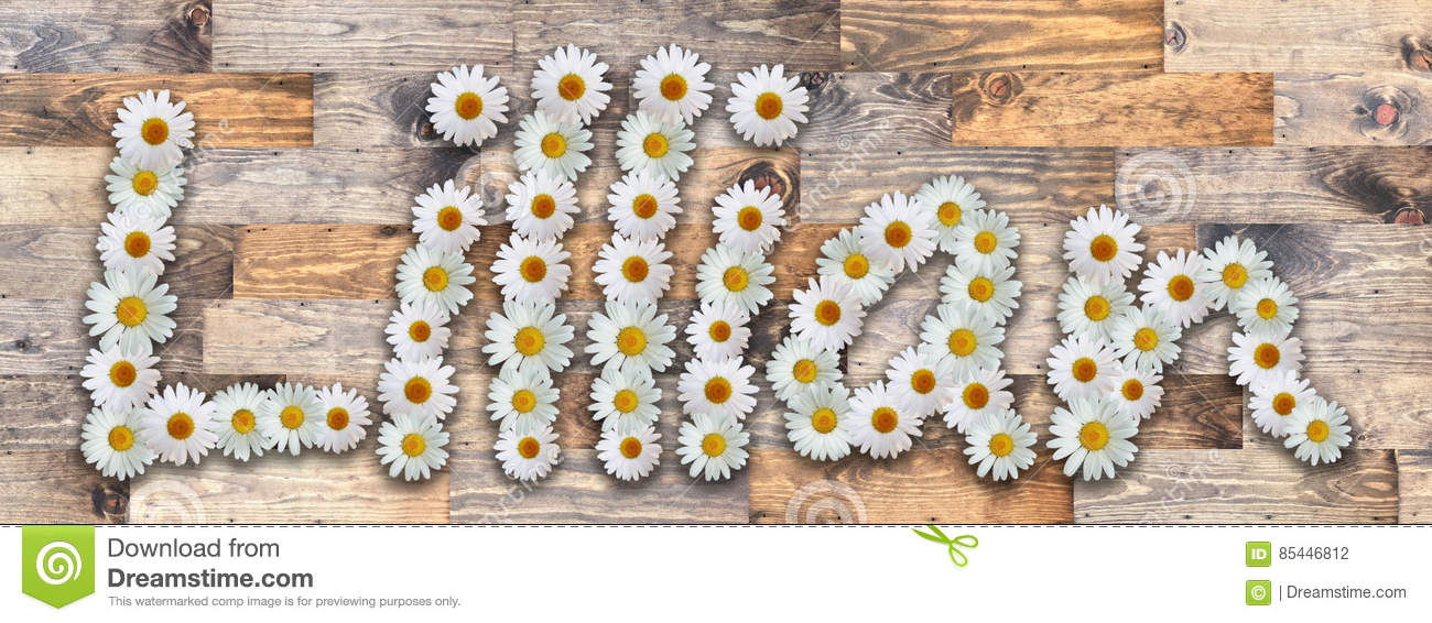 Daisy Name Lillian Wood Background