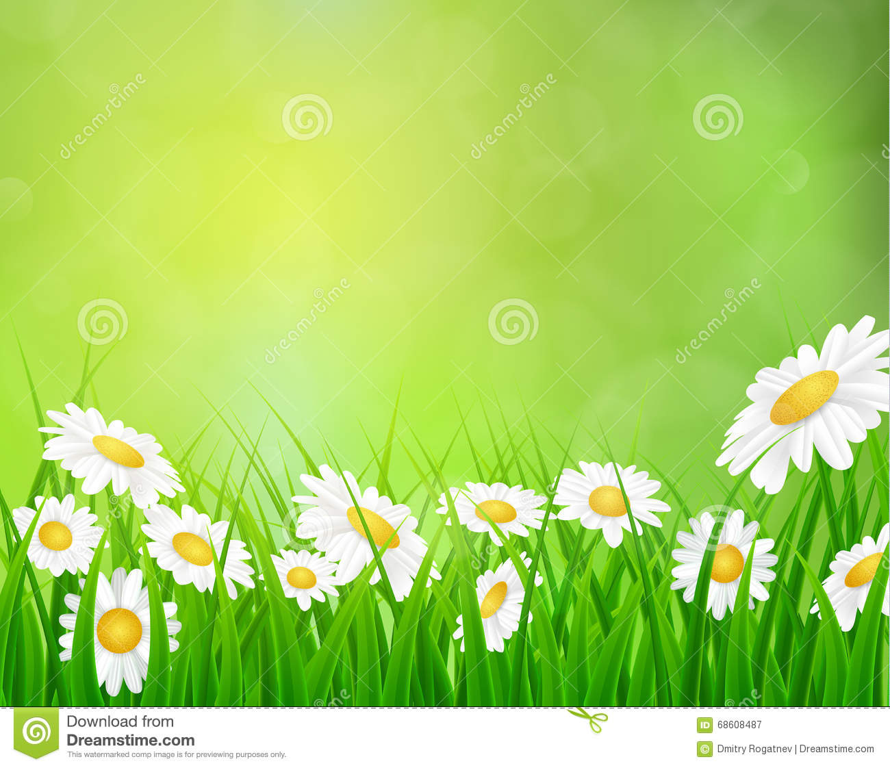 Daisy Vector Background Summer Design Stock Vector ...
