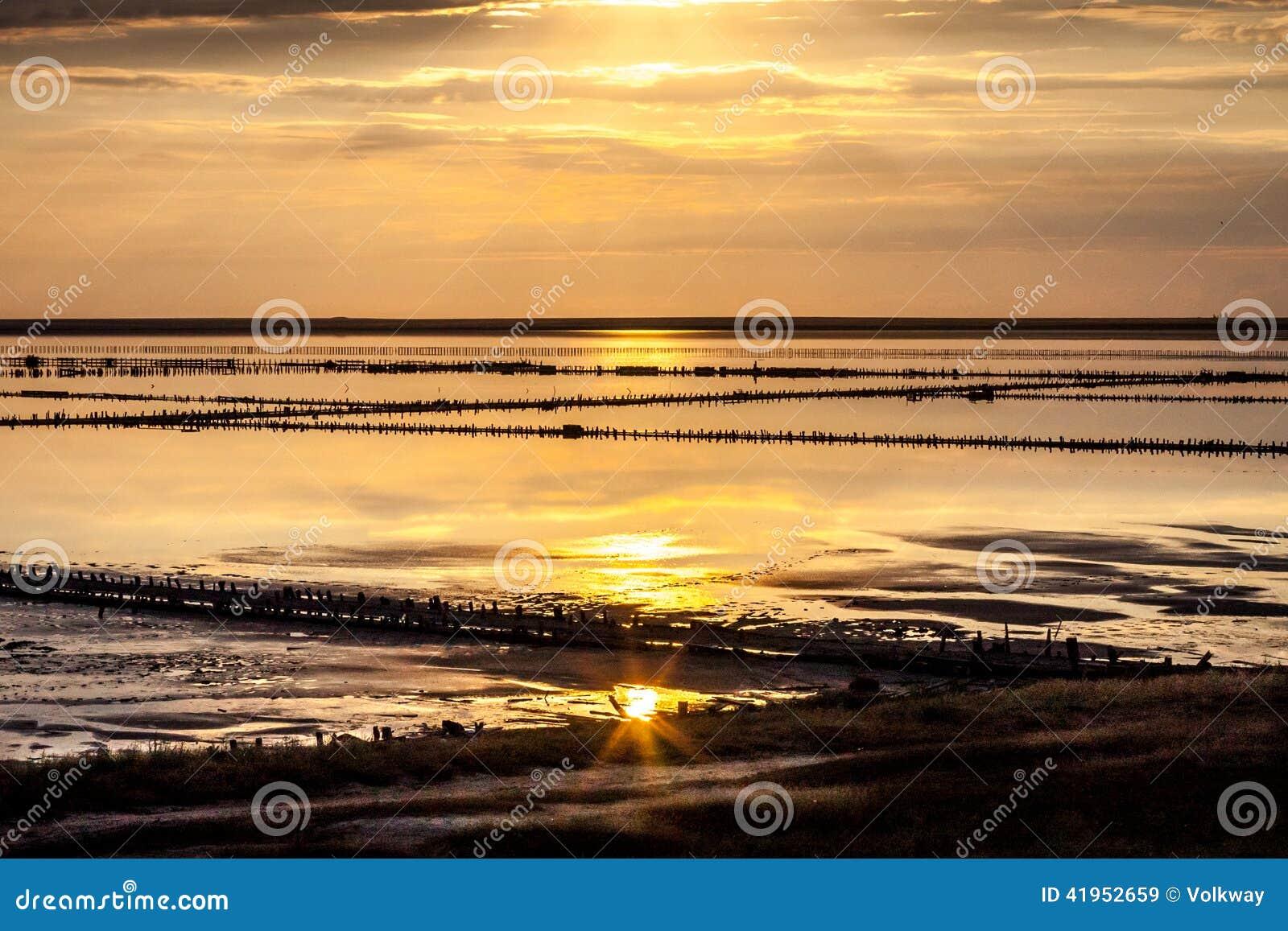 Daj się narażenia na plaży wolnym miękkim sunset fala bardzo