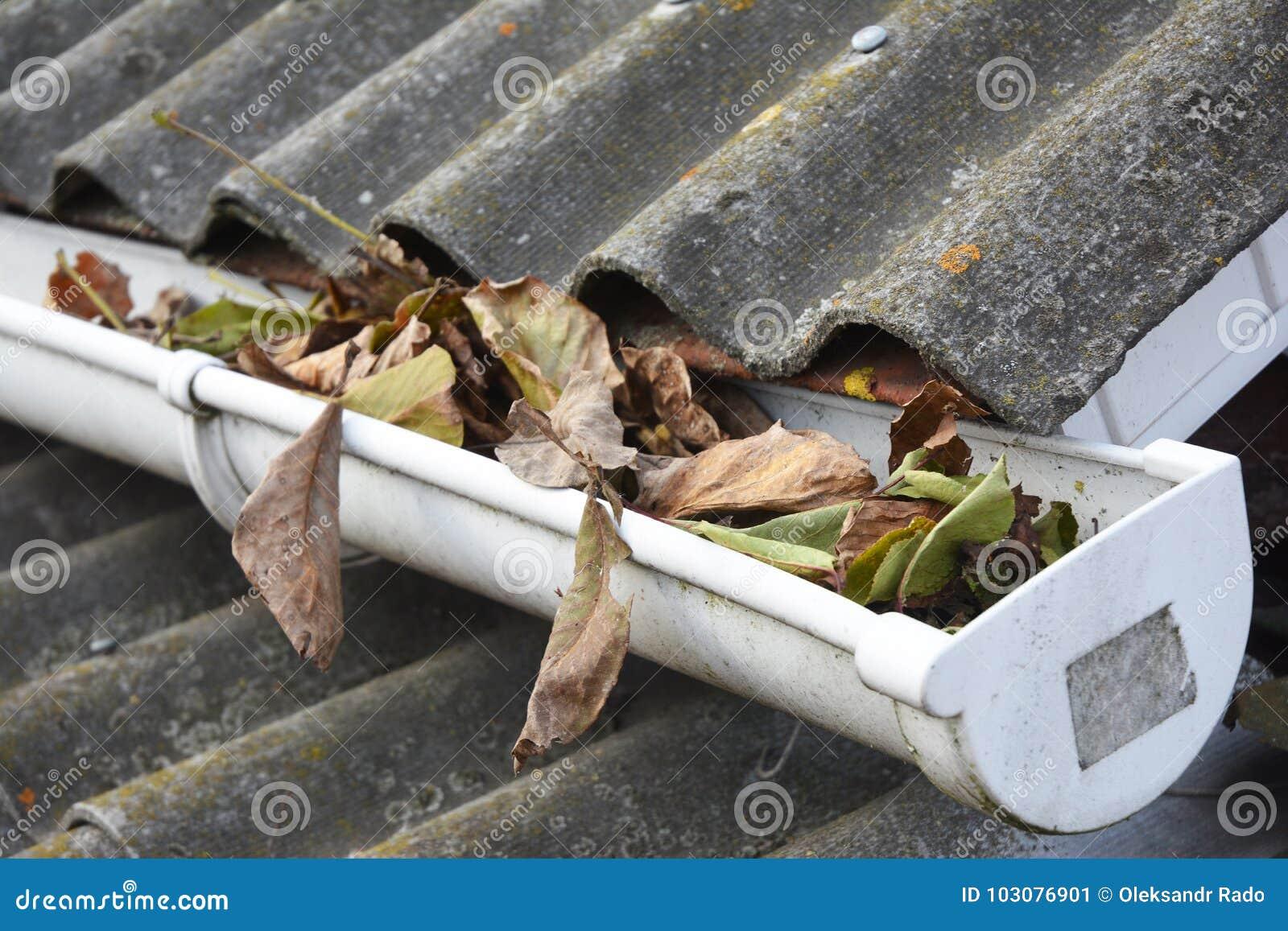 Dakgoot het Schoonmaken van Bladeren in de Herfst Maak Uw Goten schoon alvorens zij Uw Portefeuille leeghalen Dakgoot het Schoonm