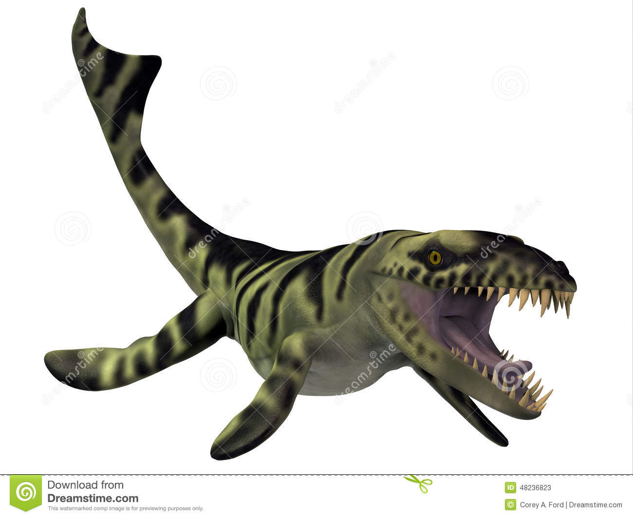 Dakosaurus dinosaur stock illustration illustration of - Dinosaure marin carnivore ...