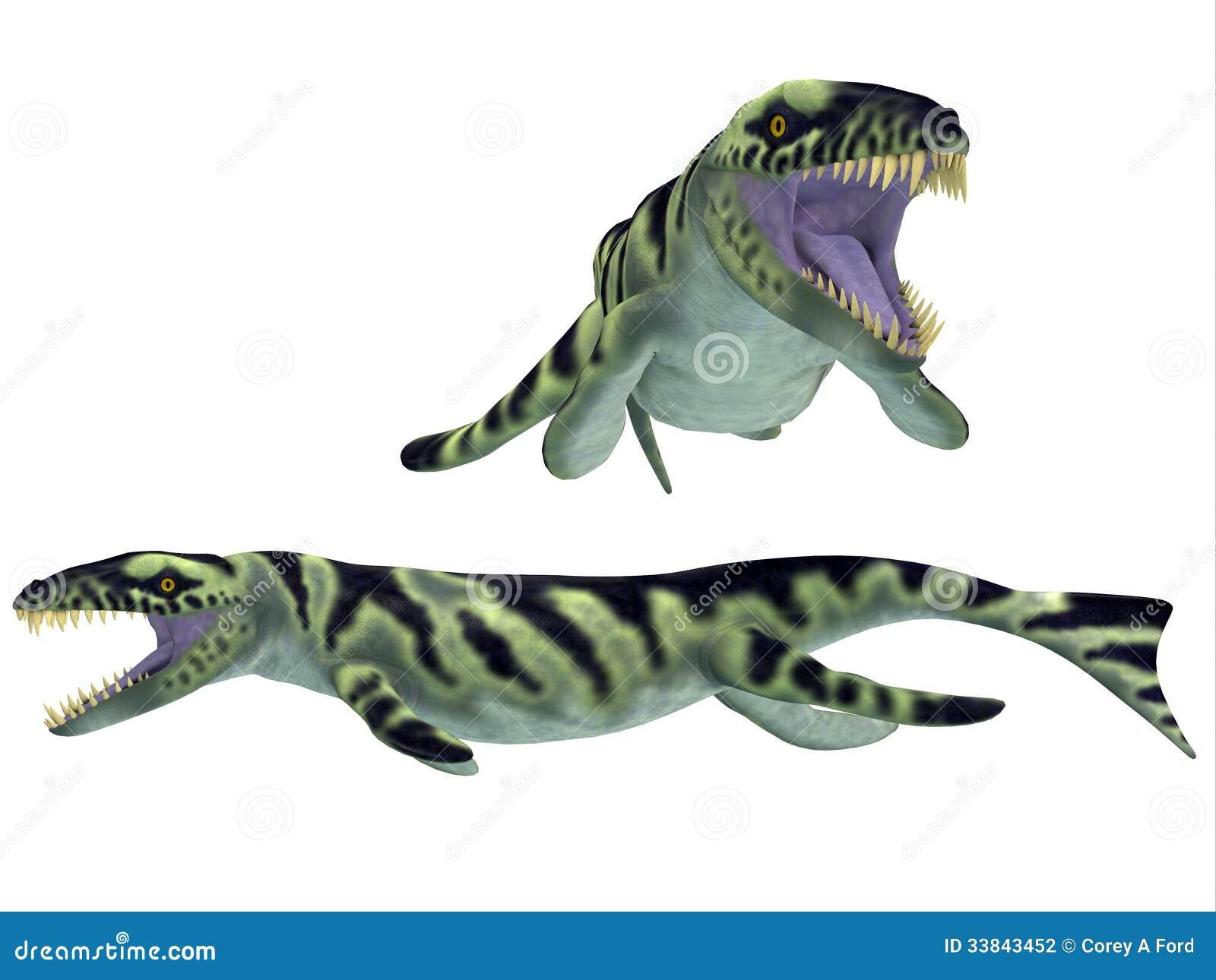 dakosaurus on white stock photography image 33843452 reptile clipart public domain reptile clipart free