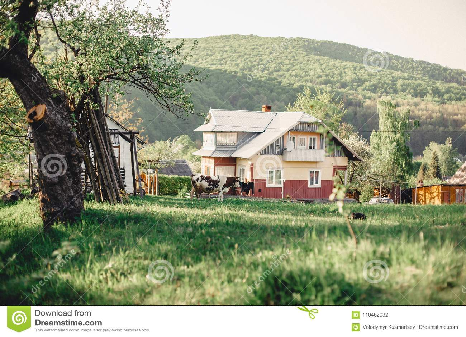 Dal för Carpathian berg nära byn med en sikt på Het