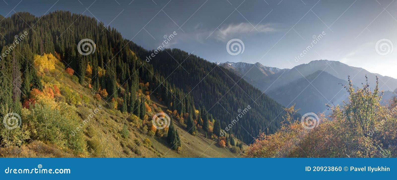 Daling van berg