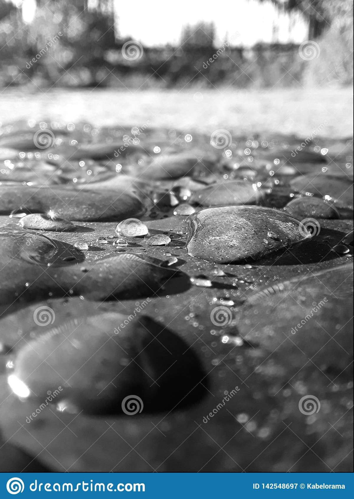 Dalingen van water op de vloeroppervlakte in de ochtend
