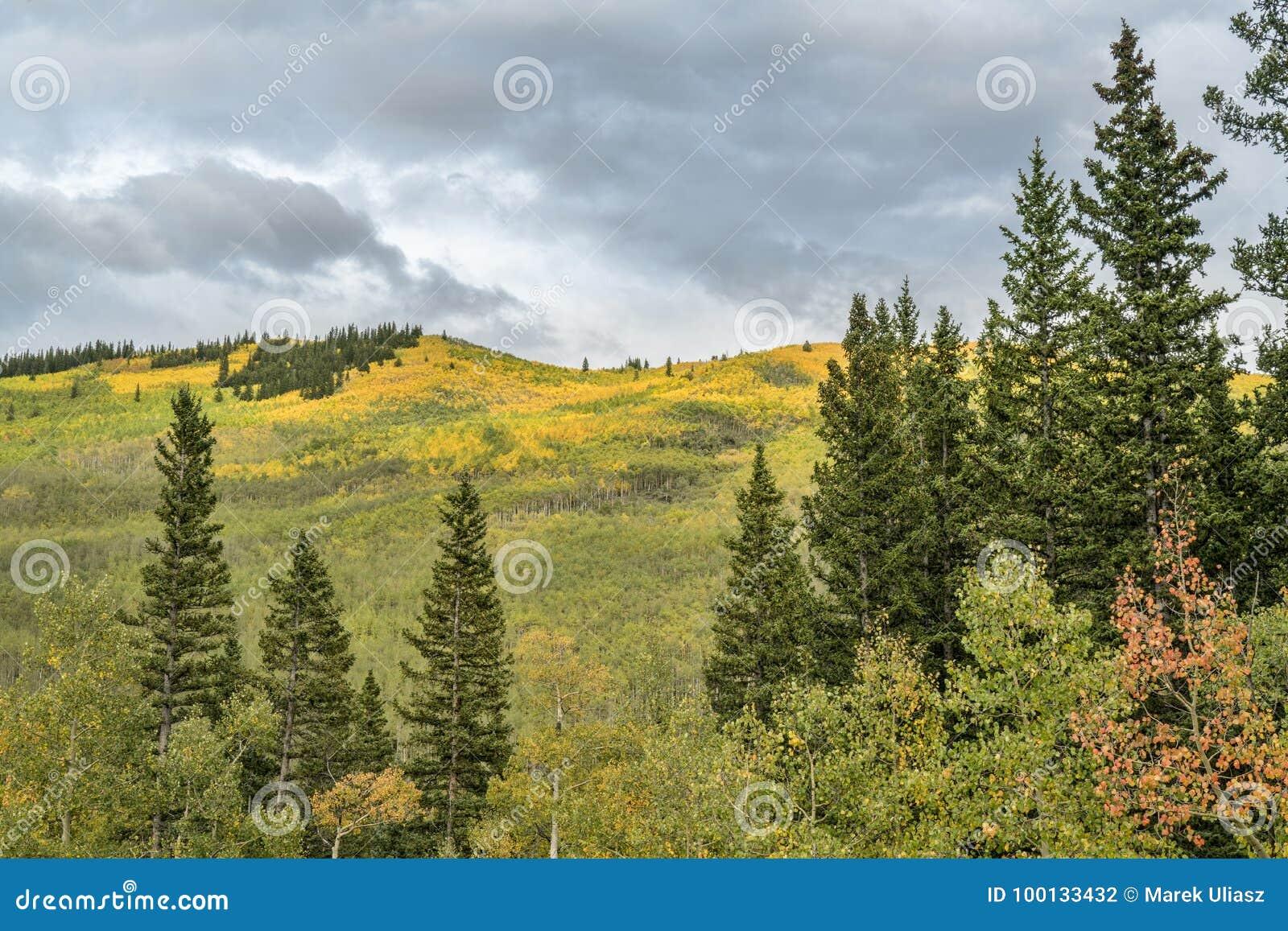 Dalingskleuren bij Kenosha-Pas in Colorado