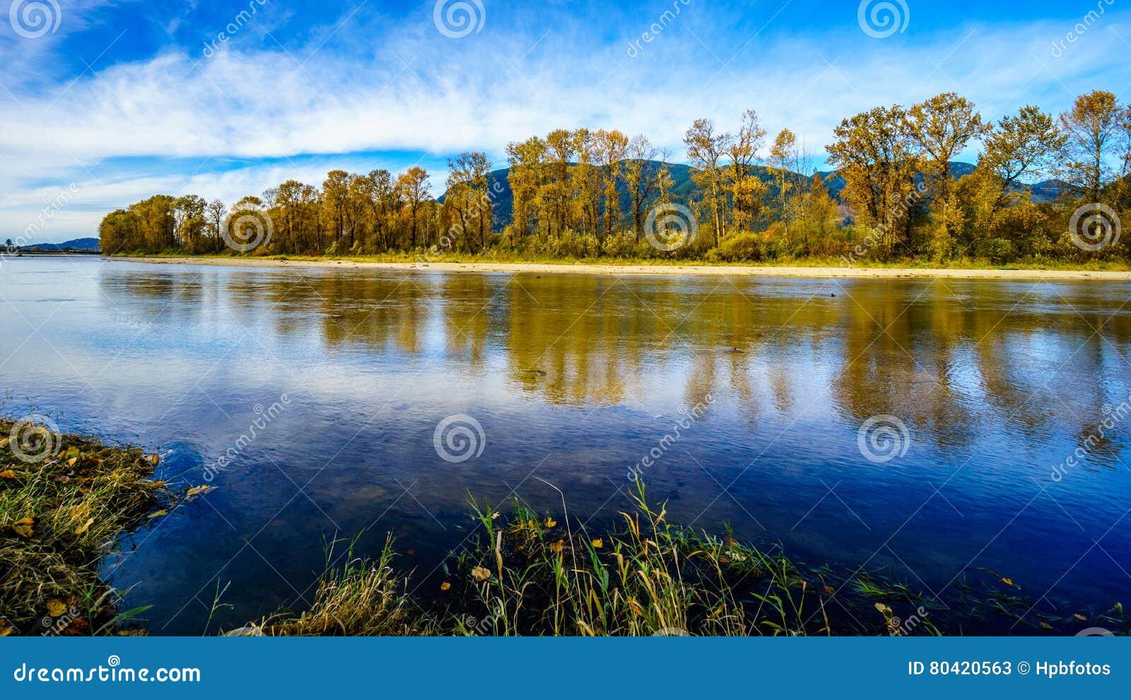 Dalingskleuren rond Nicomen Slough, een tak van Fraser River, aangezien het door Fraser Valley vloeit