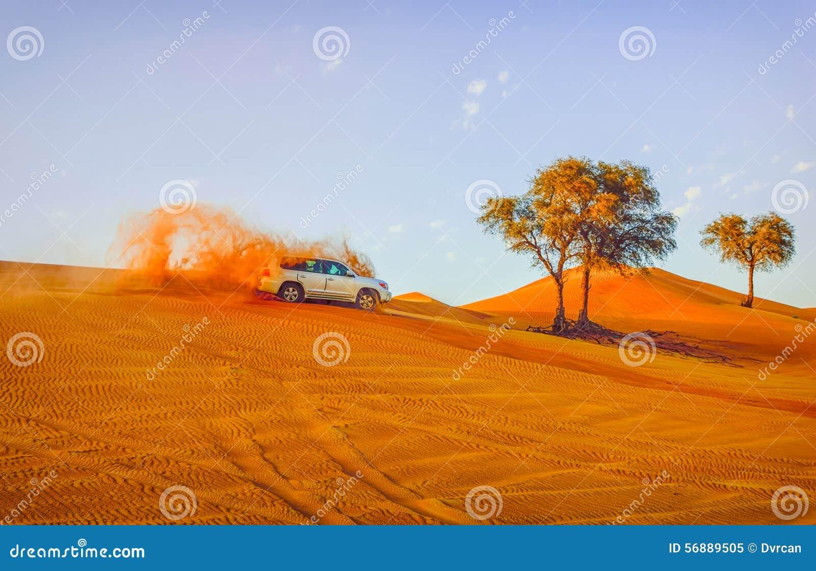 4 dalla duna 4 che colpisce sono uno sport popolare del deserto arabo
