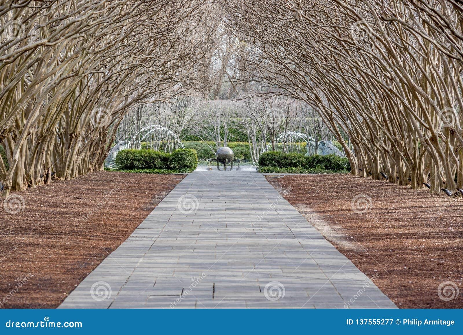 Dallas Arbitorium en Botanische Tuin in de Winter
