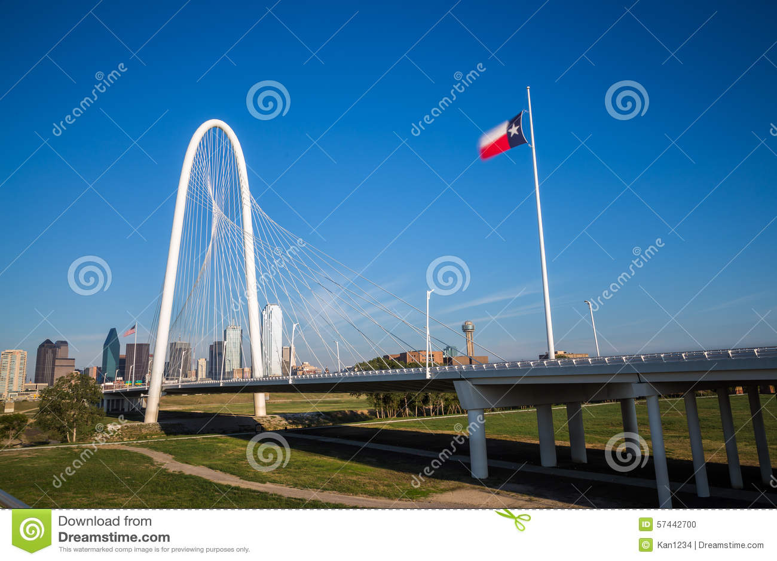 Dallas w centrum linia horyzontu i Margaret buda wzgórzy most od Conti