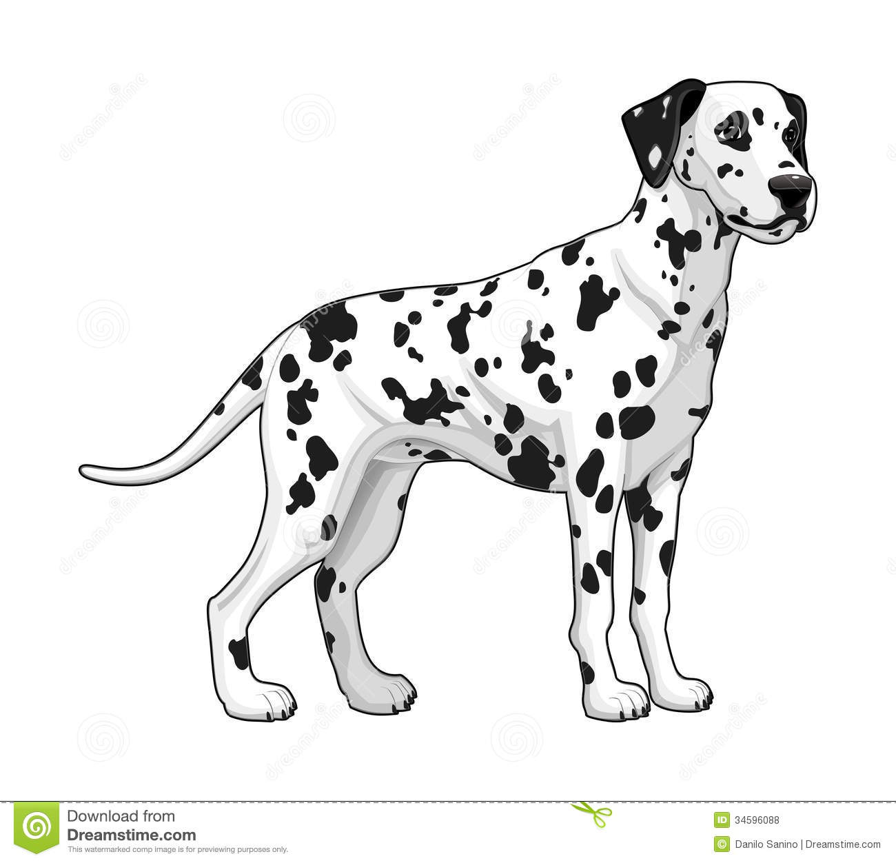 dalmatian vector isolated dog mr no pr no 2 1113 2