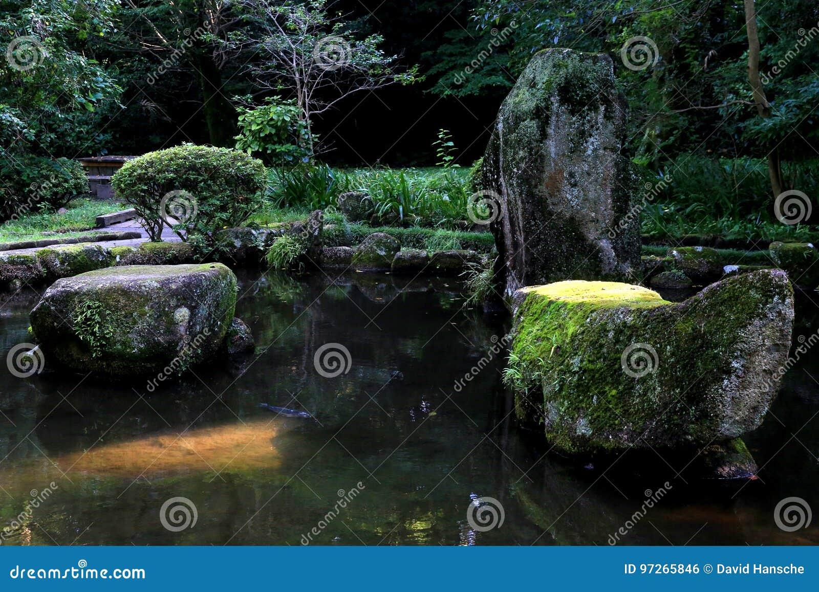 Damm i parken