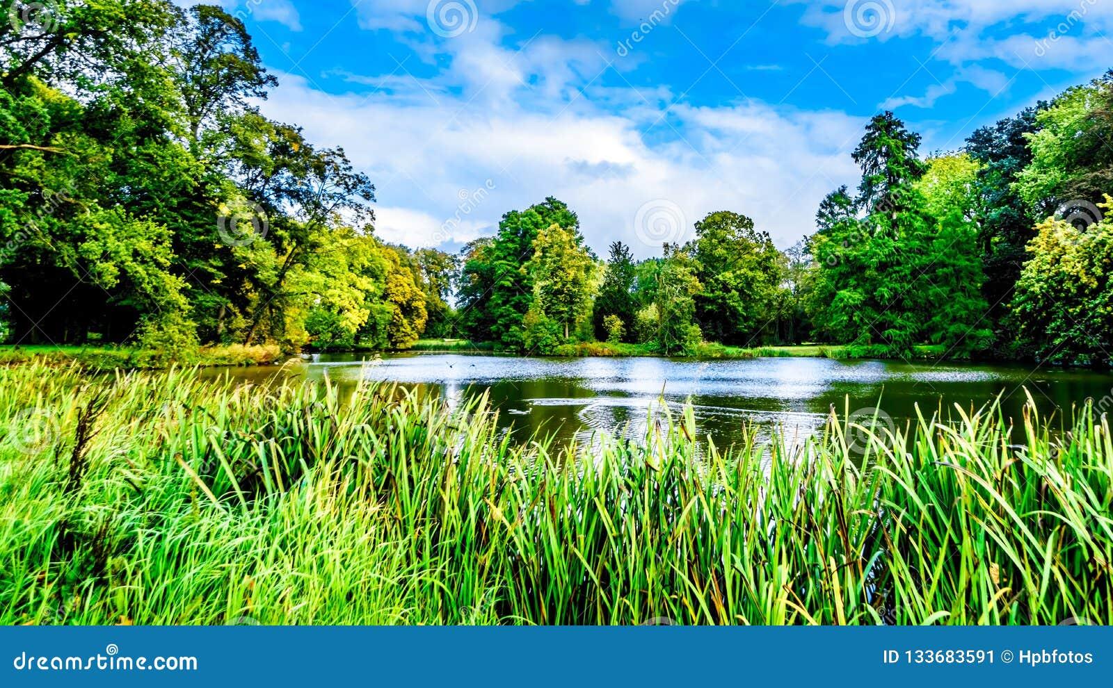 Damm och sjöar i parkerar den omgeende slotten De Haar