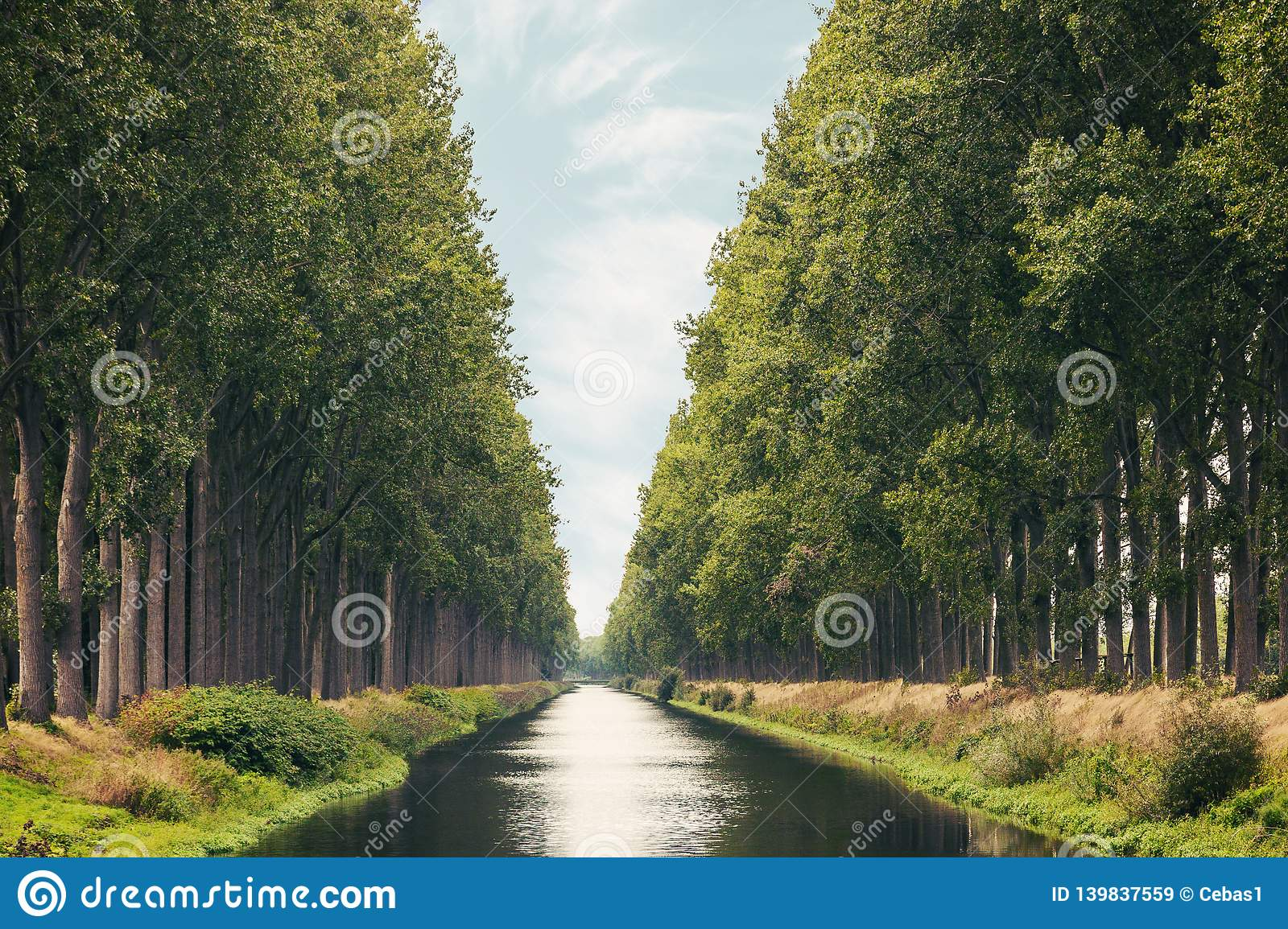 The Damme Canal in the Belgian province of West Flanders in summer