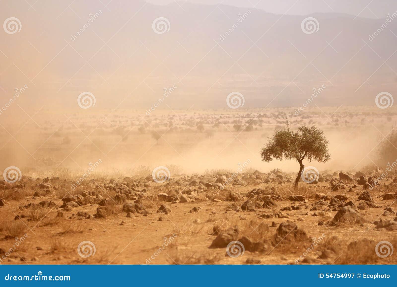 Dammiga slättar under en torka