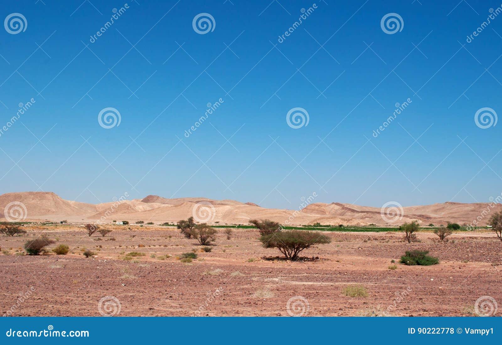 Mountains, Dirt Road, Desert, Landscape, Climate Change ...