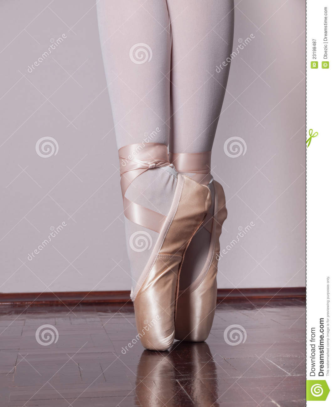 dancer in ballet pointe shoes stock image image 23198487
