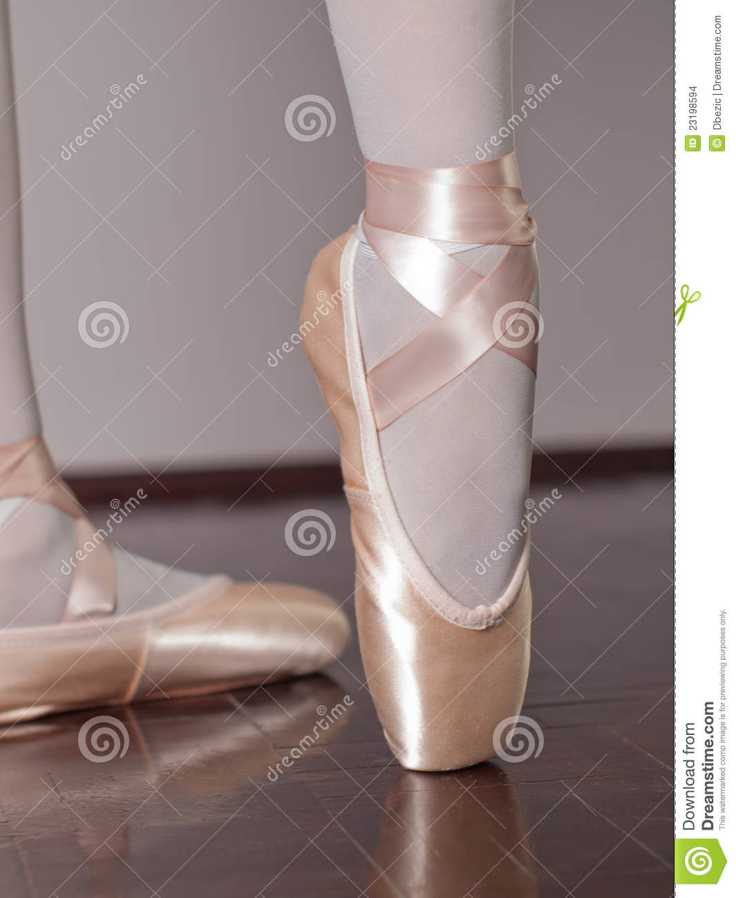 Dancer In Ballet Pointe Shoes Stock Photo Image 23198594