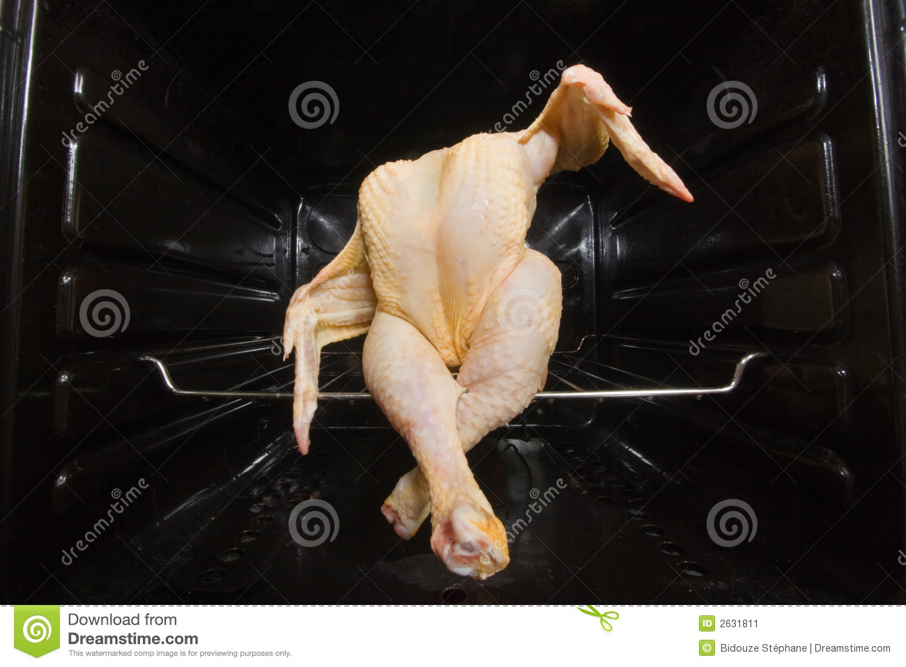 dancing chicken stock image image of imperfect sitting 2631811