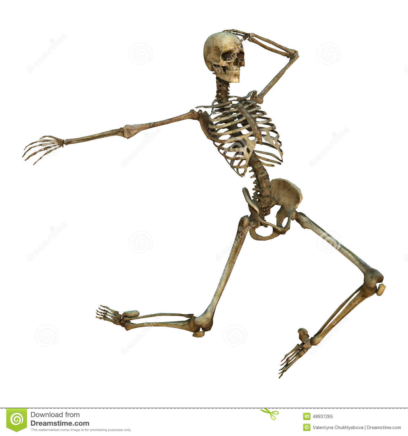 ... render of a human dancing skeleton isolated on white background