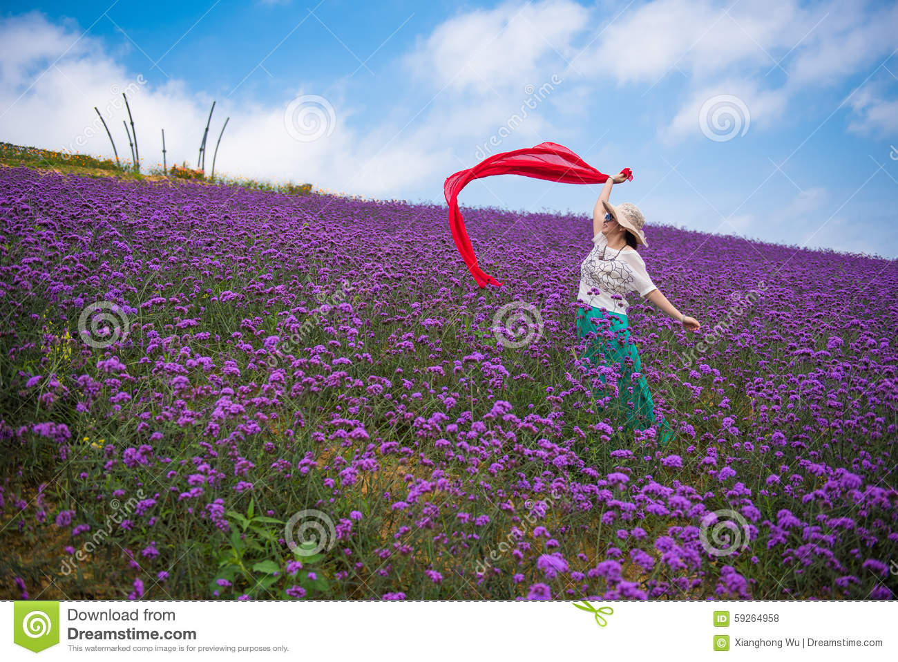 A Dancing Woman in Stunning Large Lavender Field