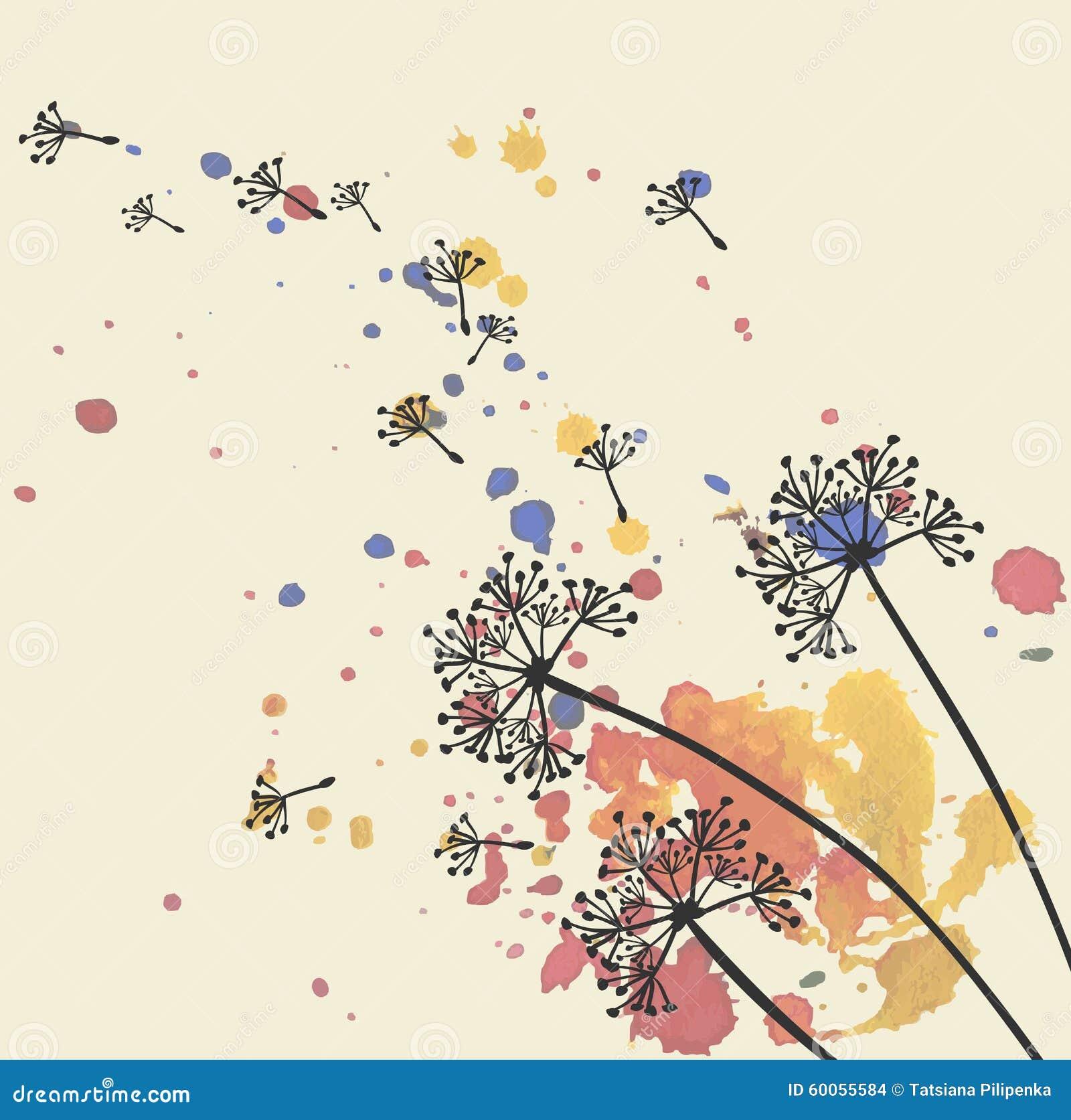 dandelion stock vector illustration of spring splash 60055584