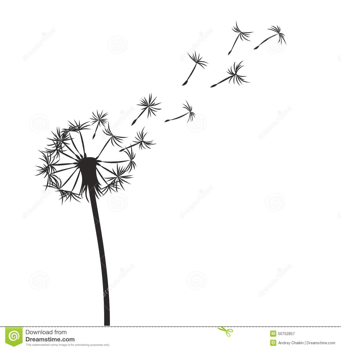 Dandelions Blowing In The Wind Drawing Dandelion Stock Illustration