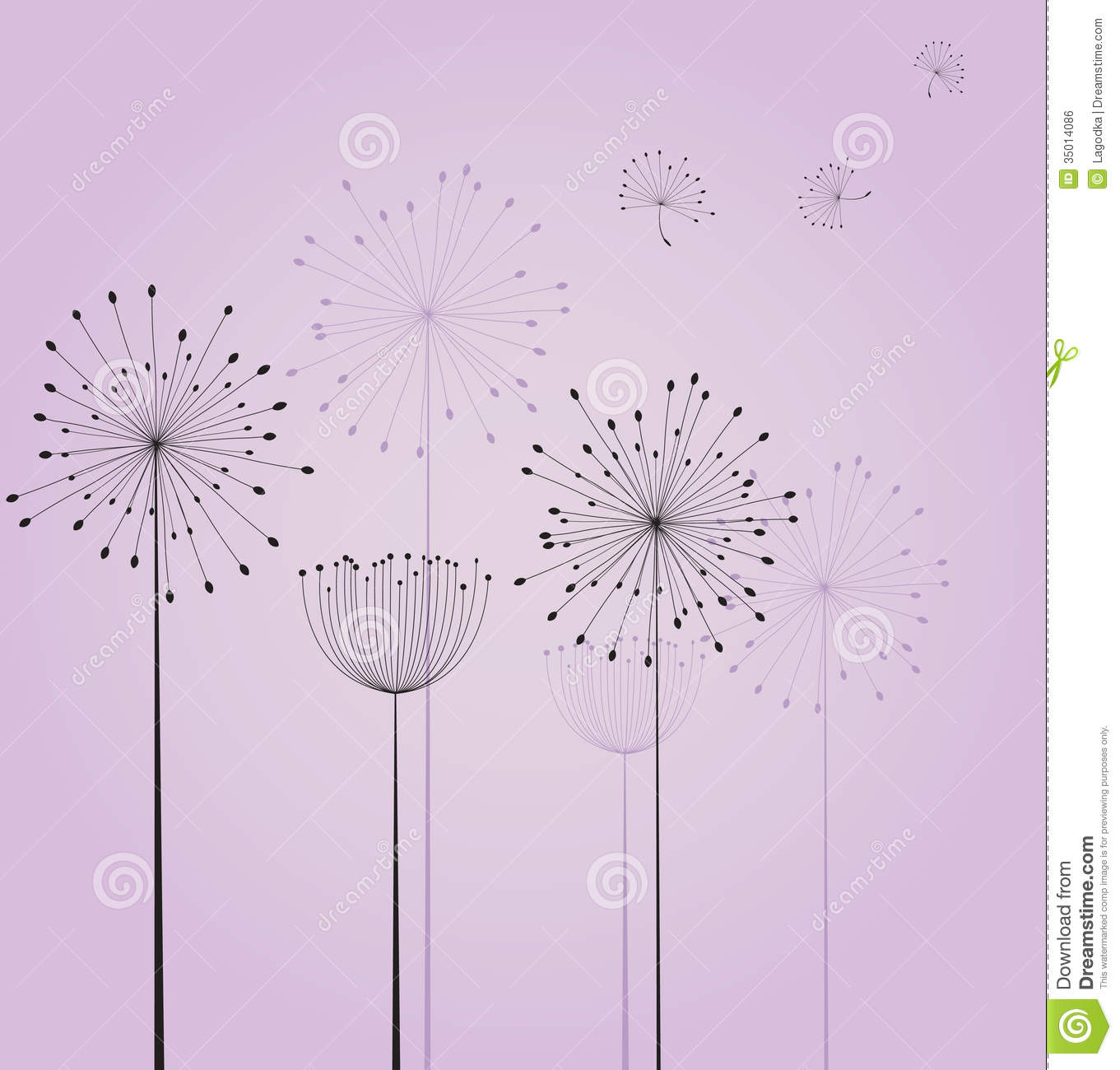 Dandelion flowers stock vector image of green card for Dandelion flowers and gifts