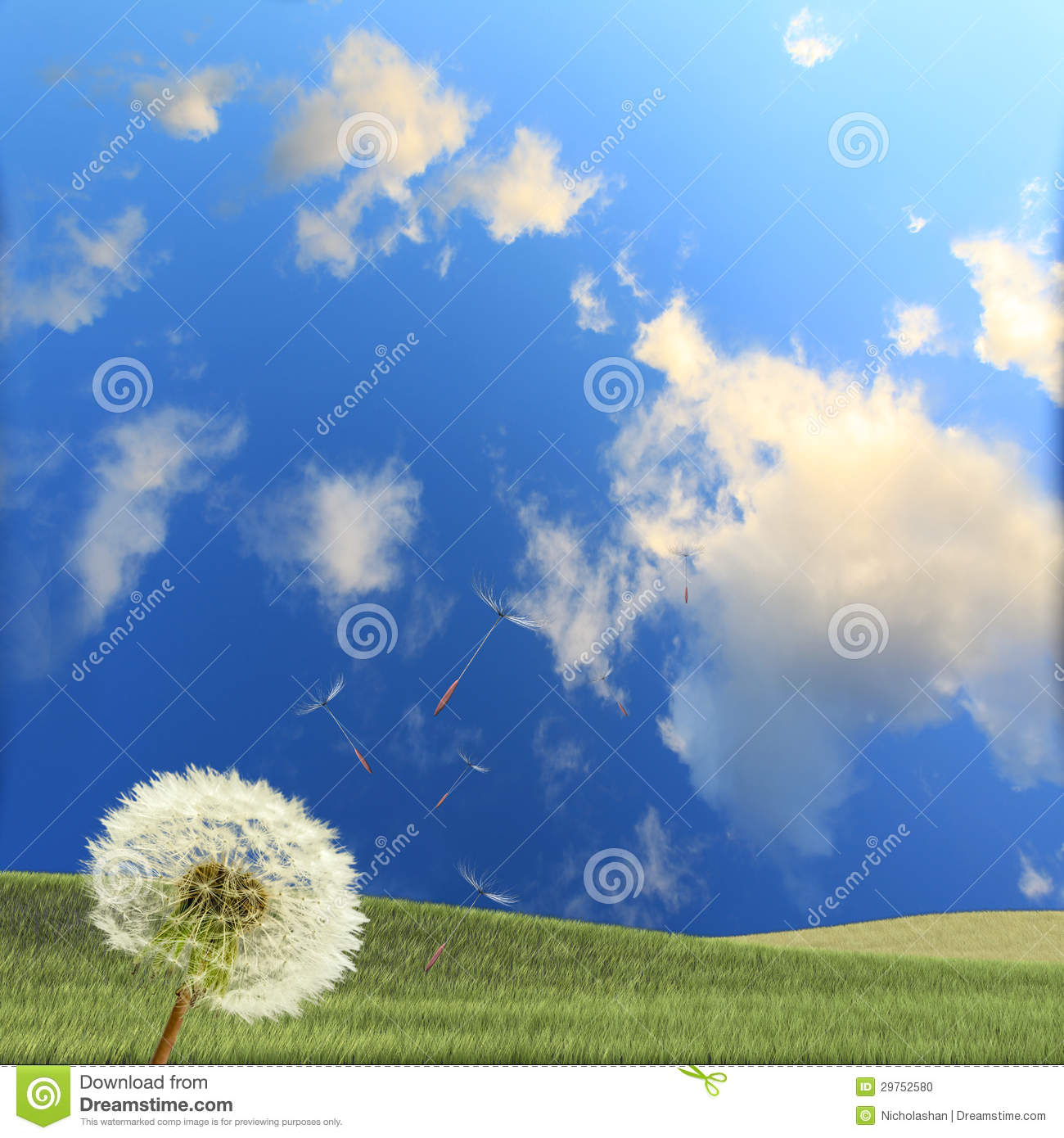Dandelion Stock Photo. Image Of Overblown, Drawing, Green