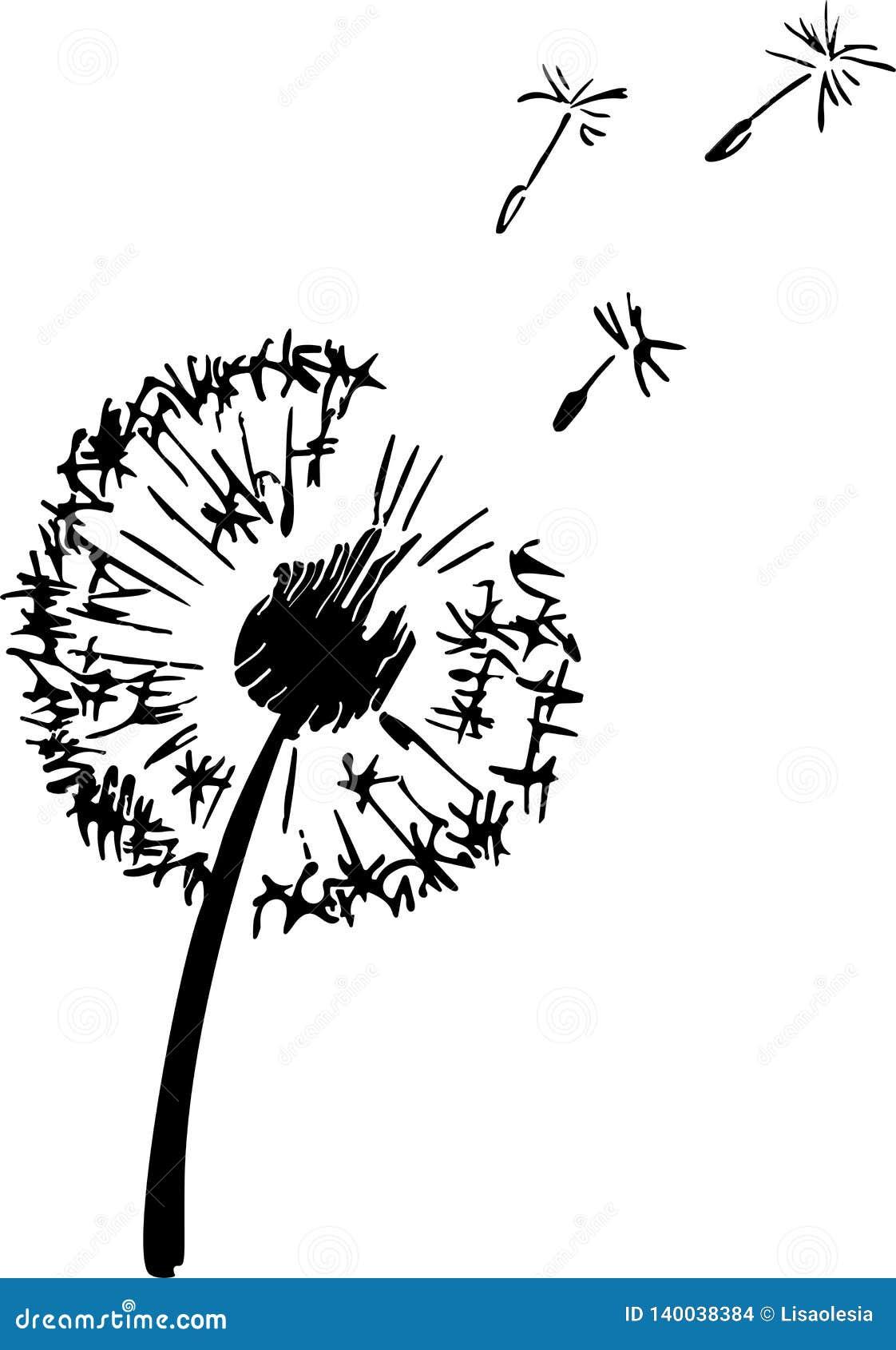 Dandelion rośliny sylwetka Kontur stosowny dla tnącego winylowego majcheru Wektorowa atrament ilustracja